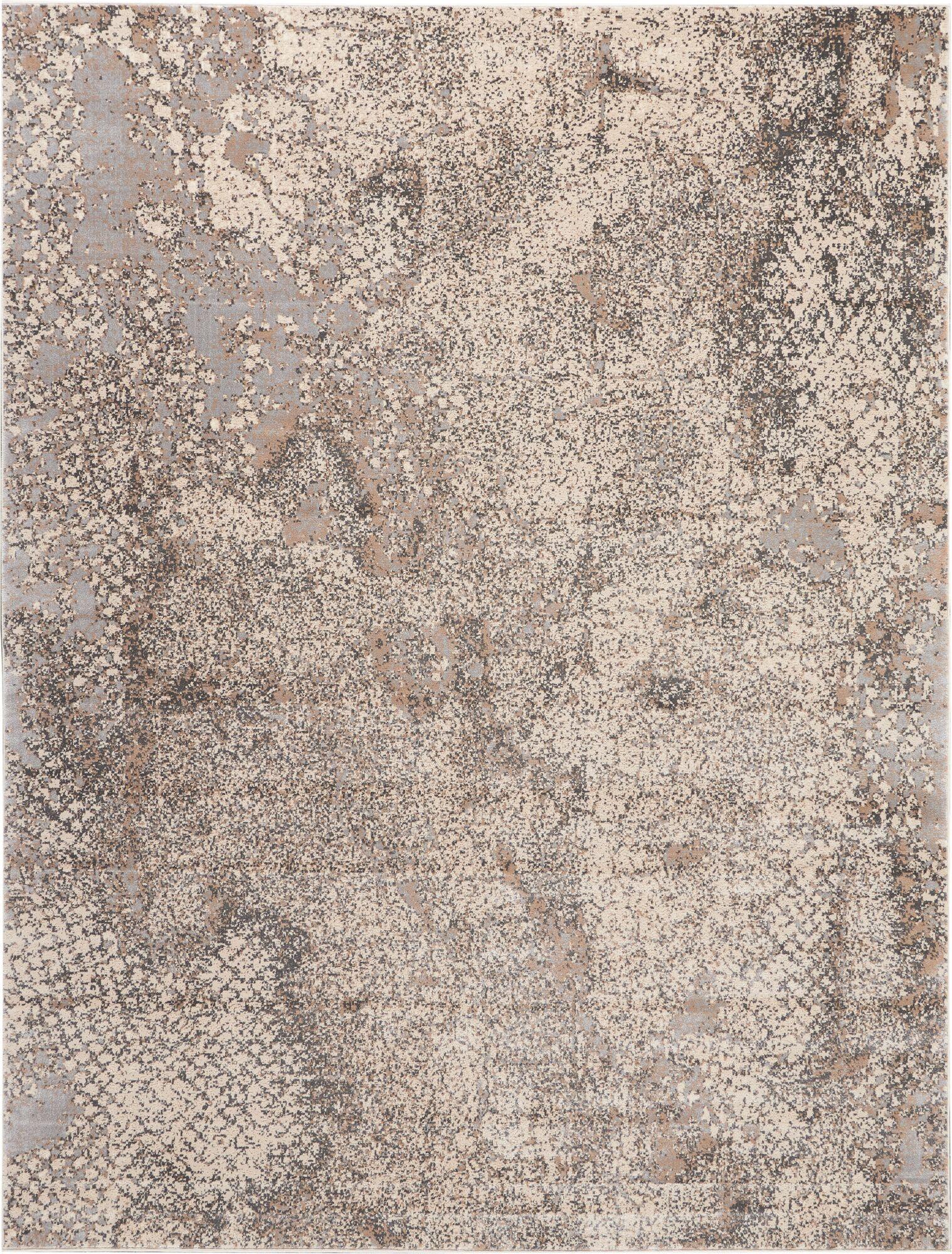 Heritage Gray Area Rug Rug Size: Rectangle 5'2