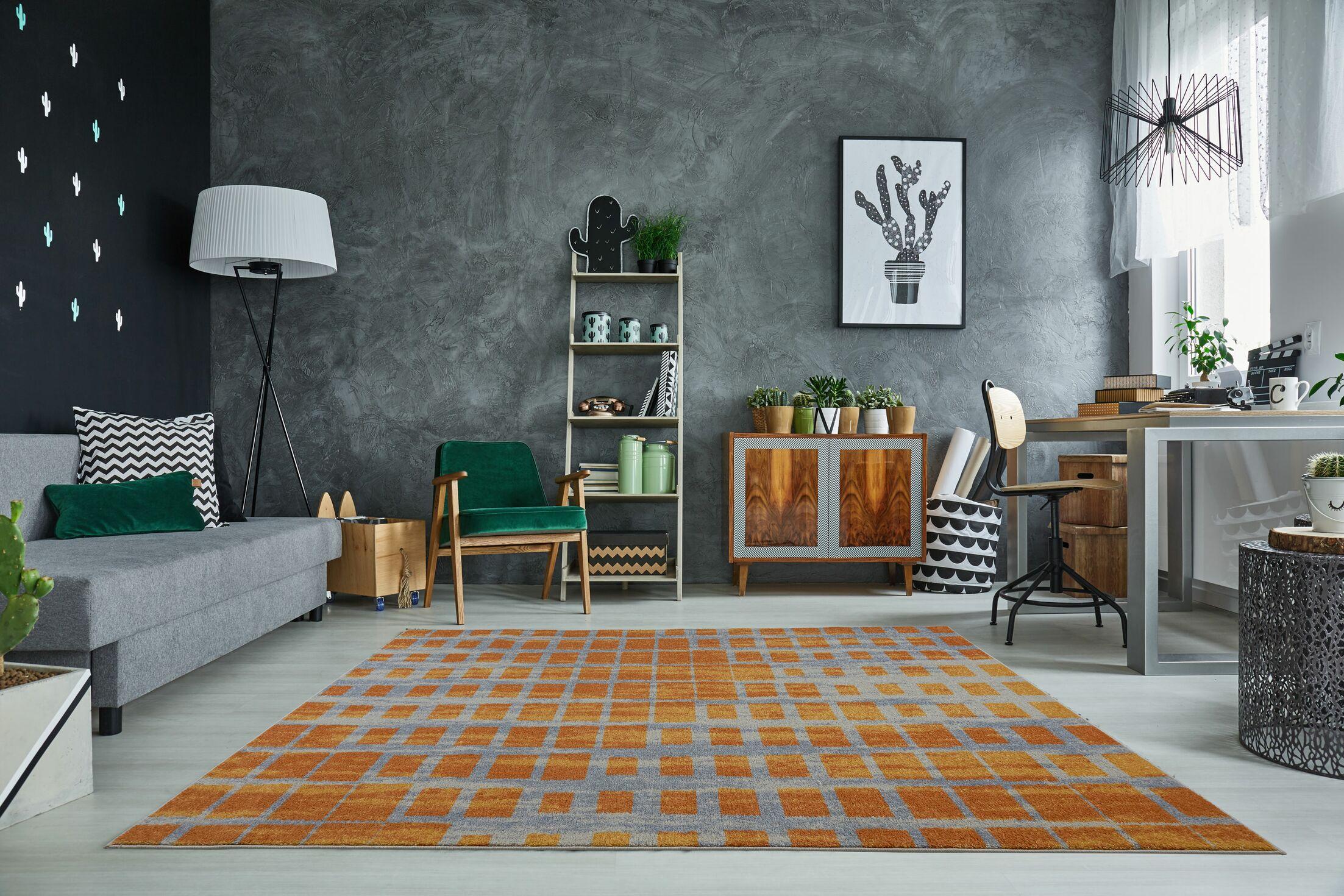 Pinheiro Gray/Orange Area Rug Rug Size: Rectangle 5'2