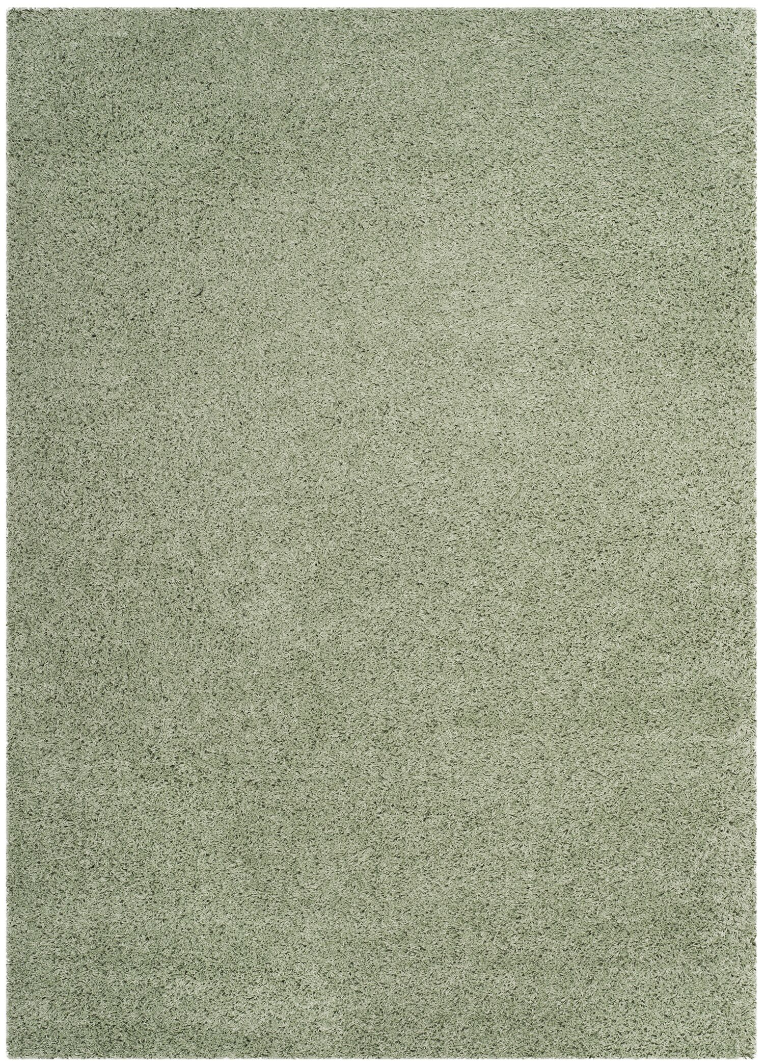 Combs Green Area Rug Rug Size: Rectangle 5'3