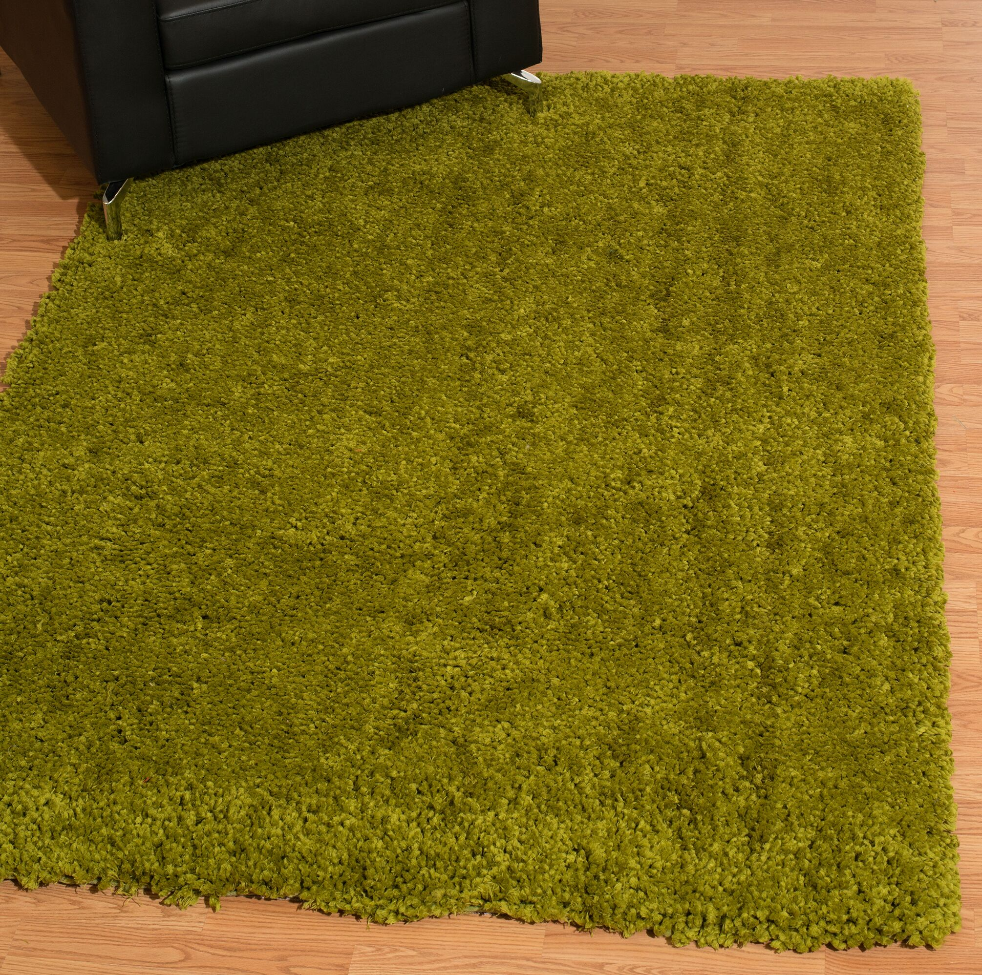 Mullenix Green Area Rug Rug Size: Rectangle 5'3