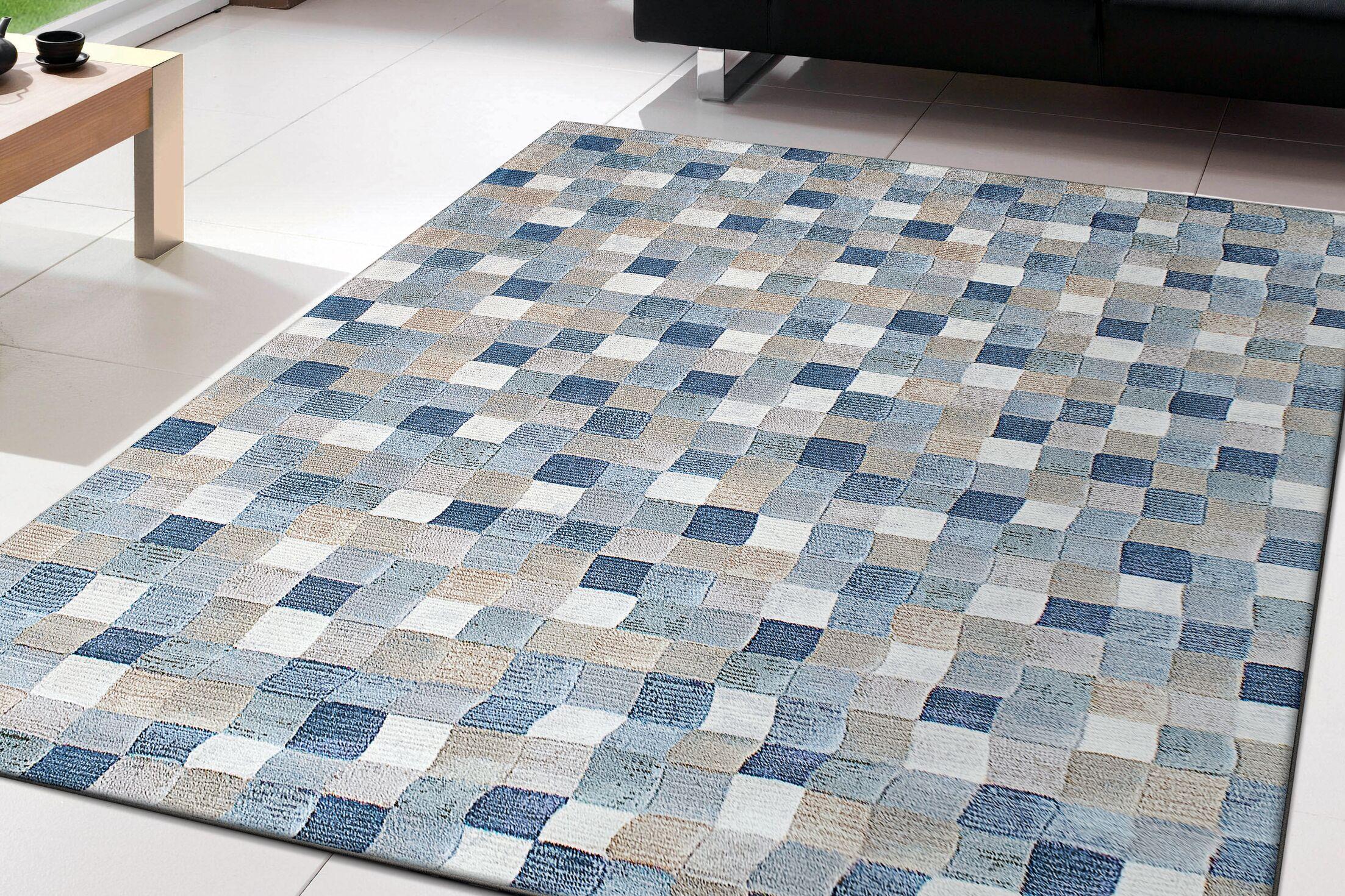 Goyette Blue Area Rug Rug Size: Rectangle 7'10
