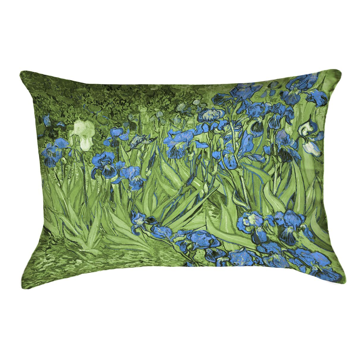 Morley Irises Lumbar Pillow Color: Green/Blue
