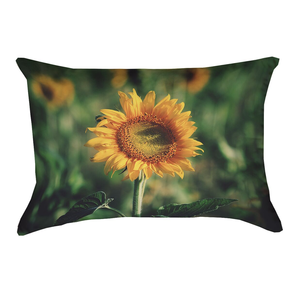 Holst Sunflower Faux Linen Double Sided Print Pillow Cover