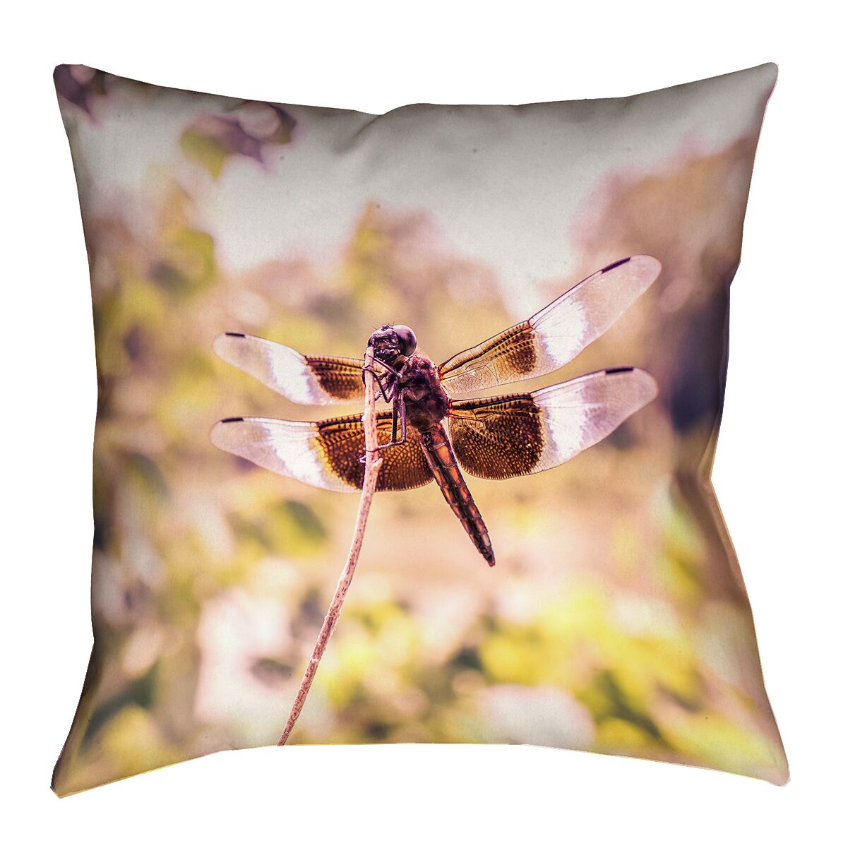Hargis Dragonfly Square Cotton Pillow Cover Size: 18