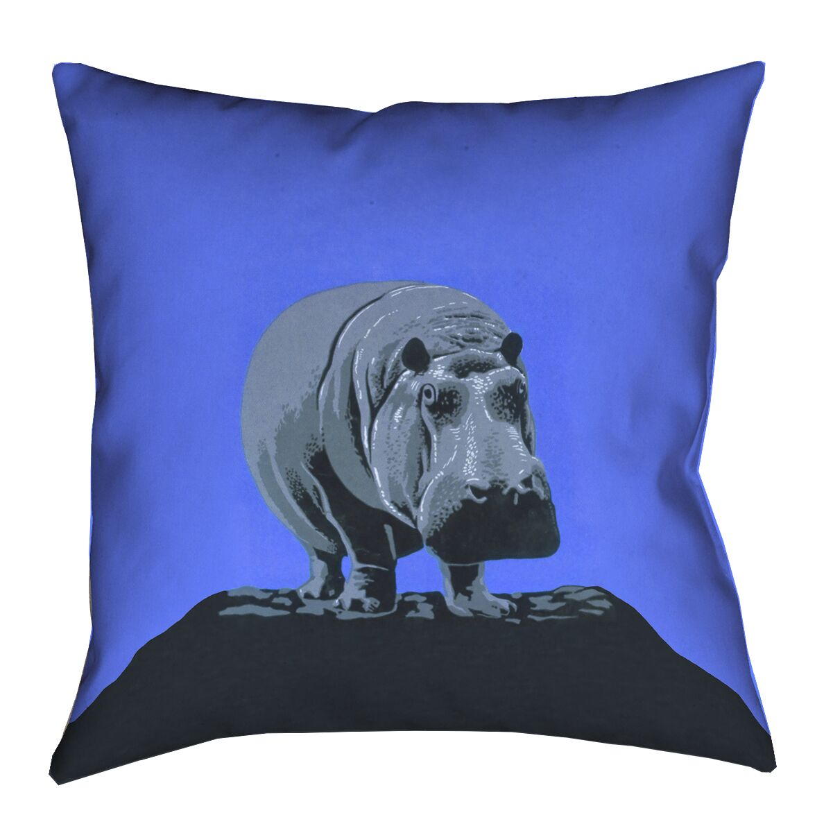 Hansard Vintage Hippo Zoo Double Sided Print Poster Throw Pillow Size: 16