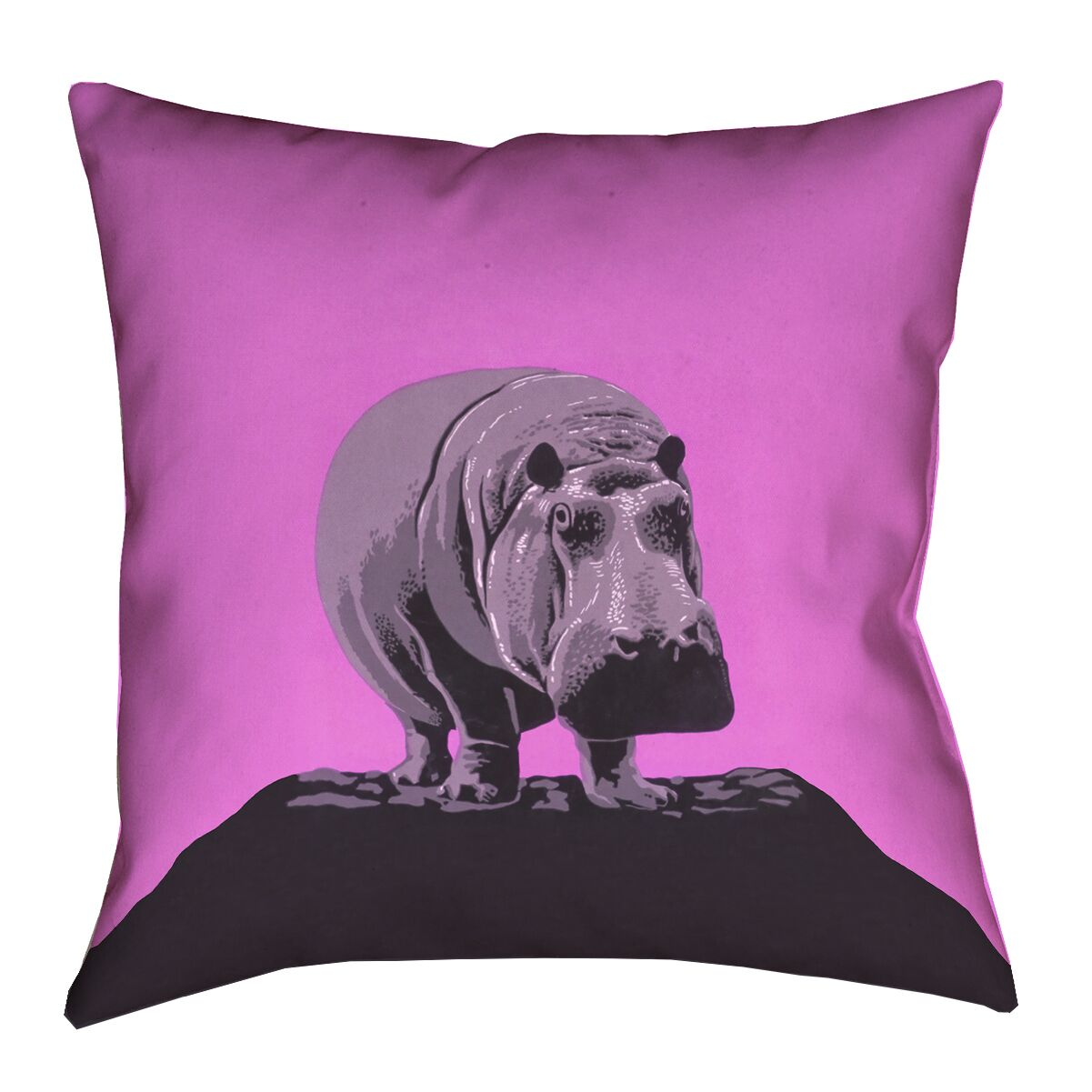 Hansard Vintage Hippo Zoo Poster 100% Cotton Throw Pillow Size: 16