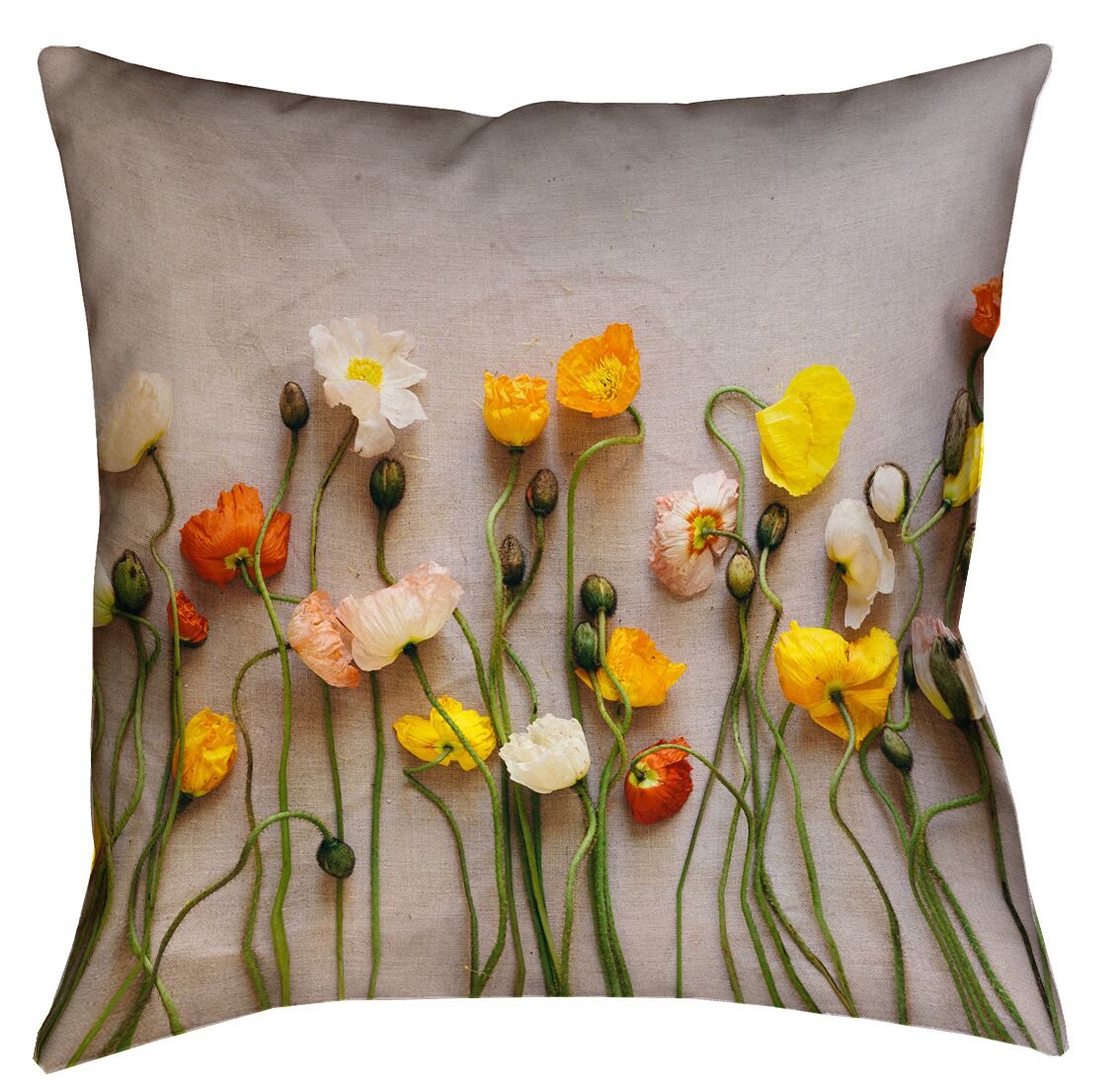 Tuyen Dried Flowers Throw Pillow Size: 18