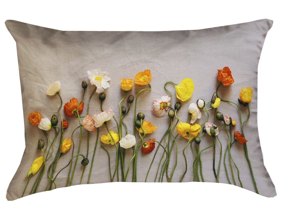 Tuyen Dried Flowers Double Sided Print Rectangular Lumbar Pillow Product Type: Pillow Cover