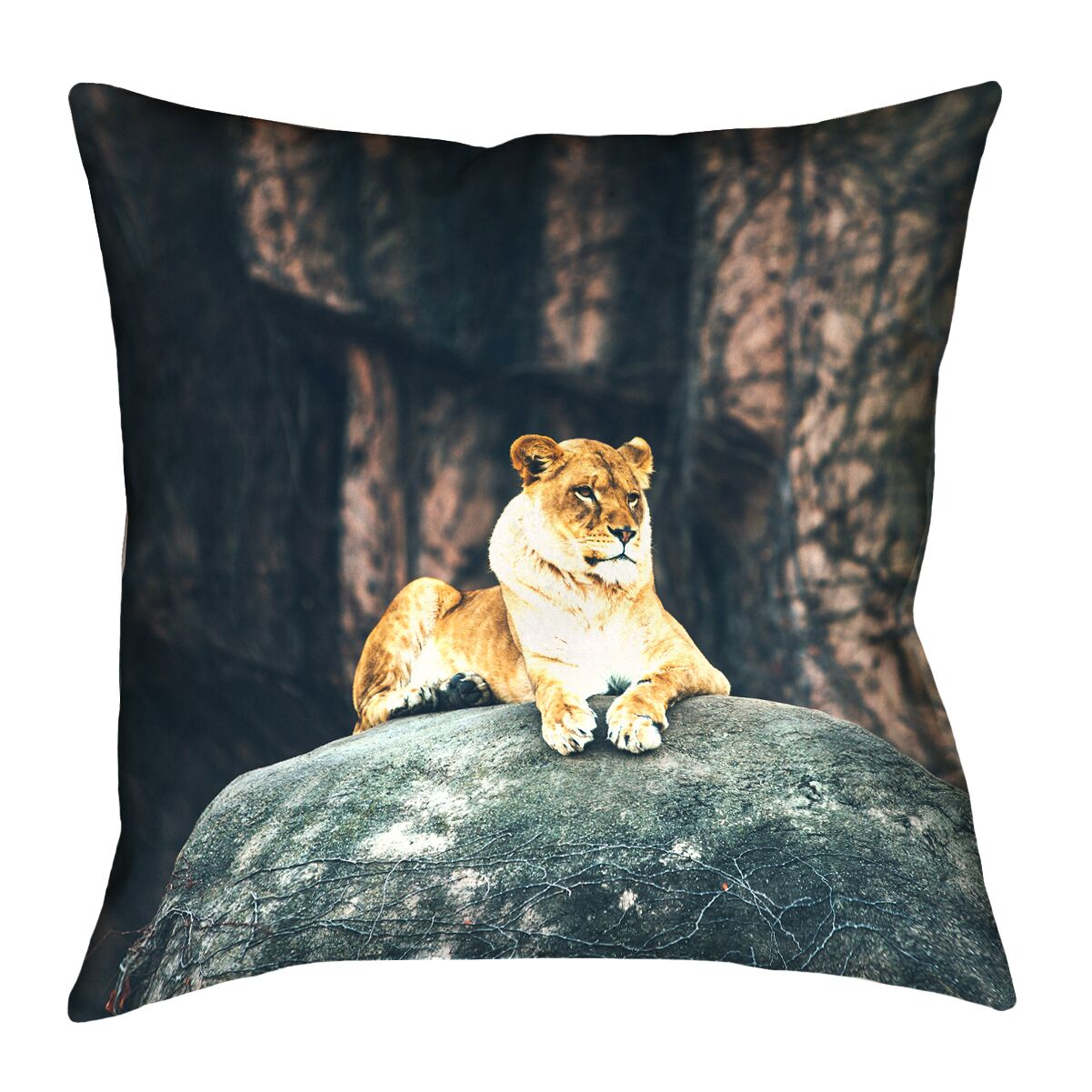 Thatcher Lioness Square 100% Cotton Pillow Cover Size: 18