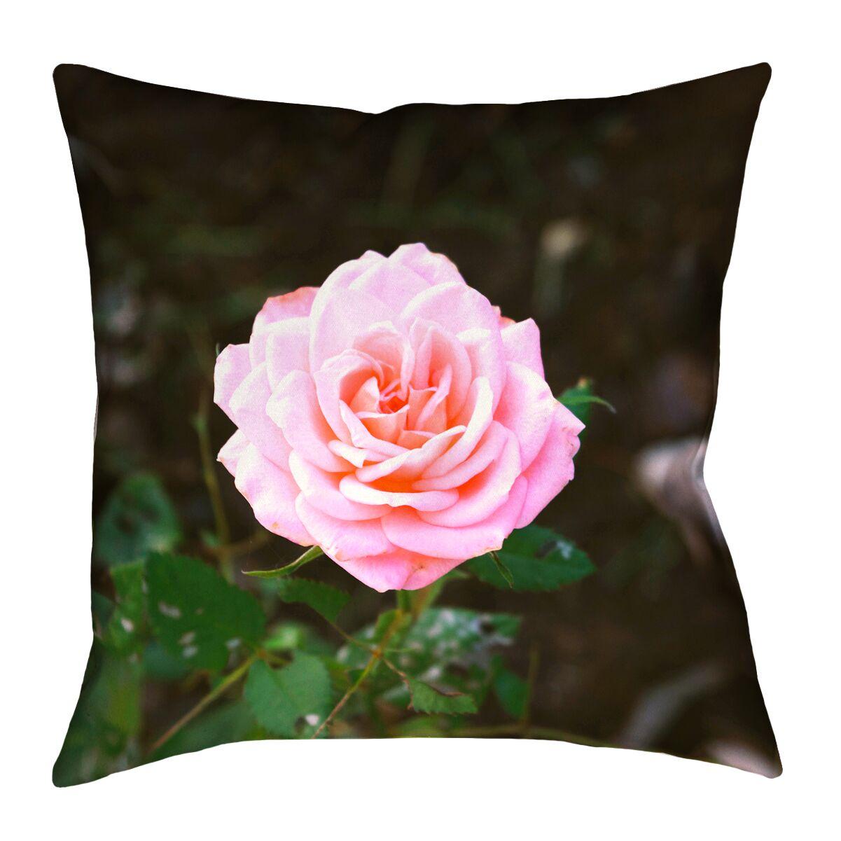 Rose Square Euro Pillow