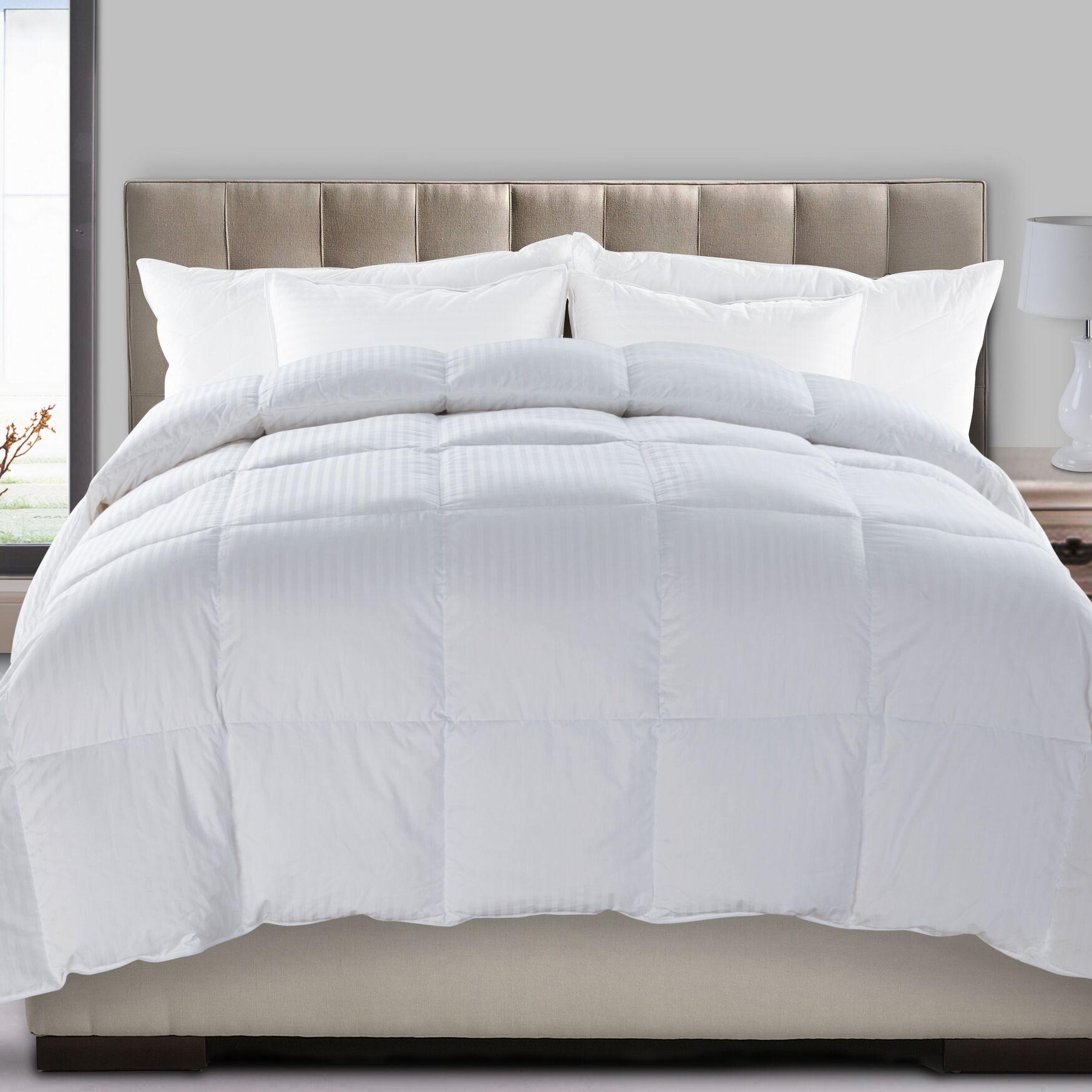 Never Microsoft All Season Down Alternative Comforter Size: Full