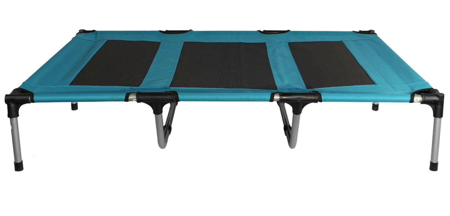 Carmen Elevated Indoor/Outdoor Portable Bed Cot Color: Blue
