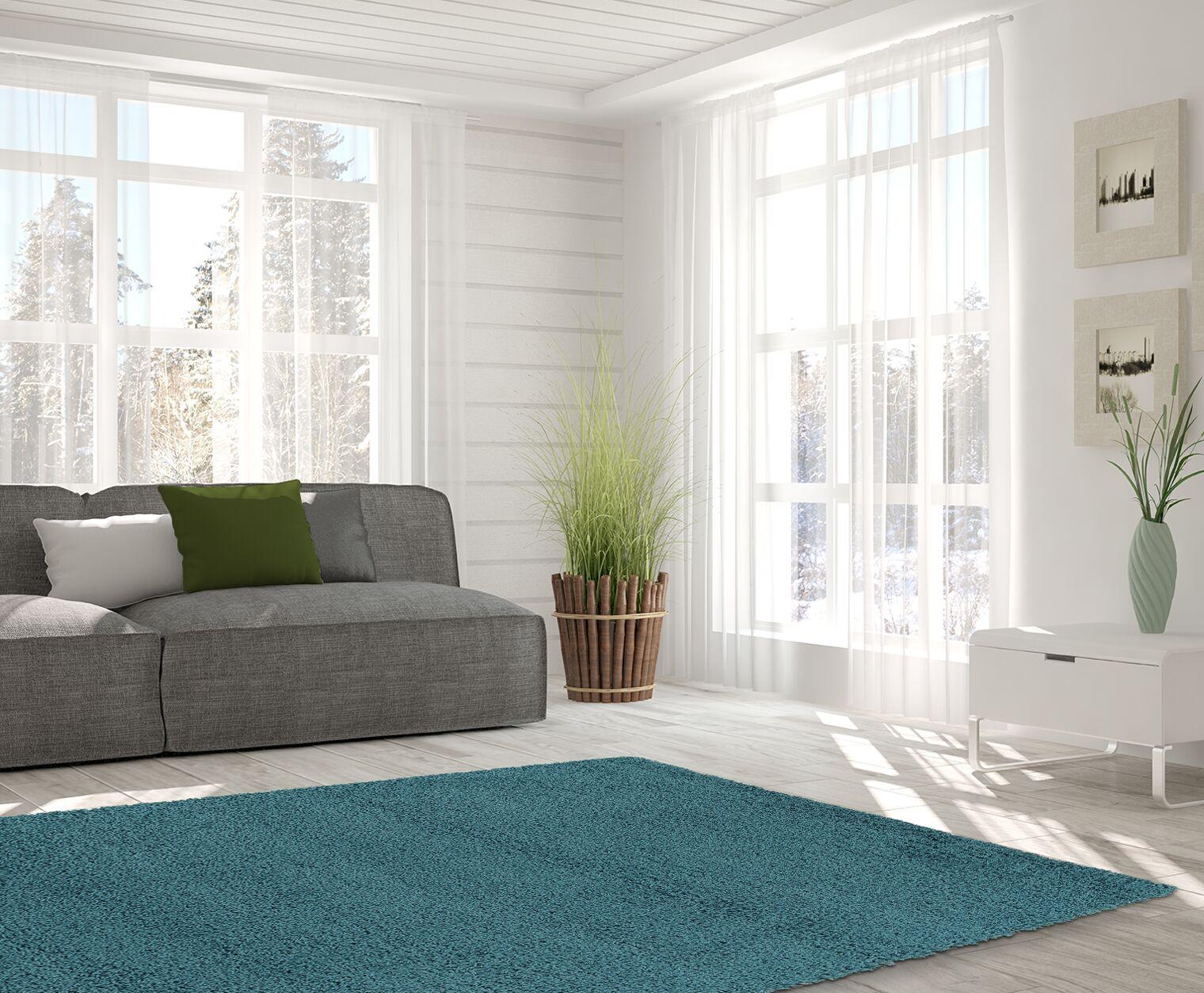 Kleiman Shaggy Solid Turquoise Area Rug Rug Size: 8' x 10'