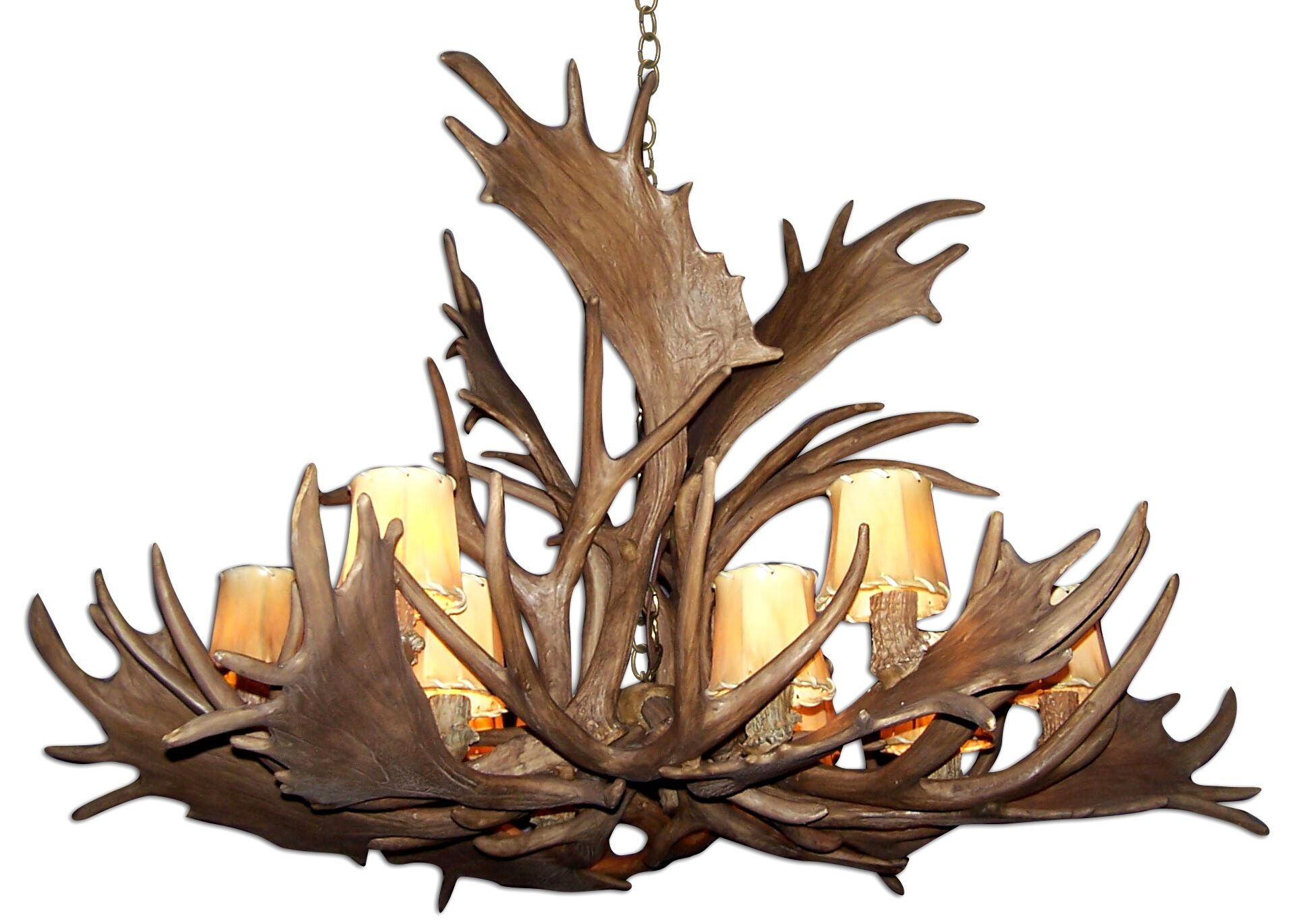 Attwood Antler Fallow Mule Deer Single Tier 12-Light We have associated to option Chandelier Shade Color: Rawhide, Finish: Rustic Bronze/White, Shade Included: Yes
