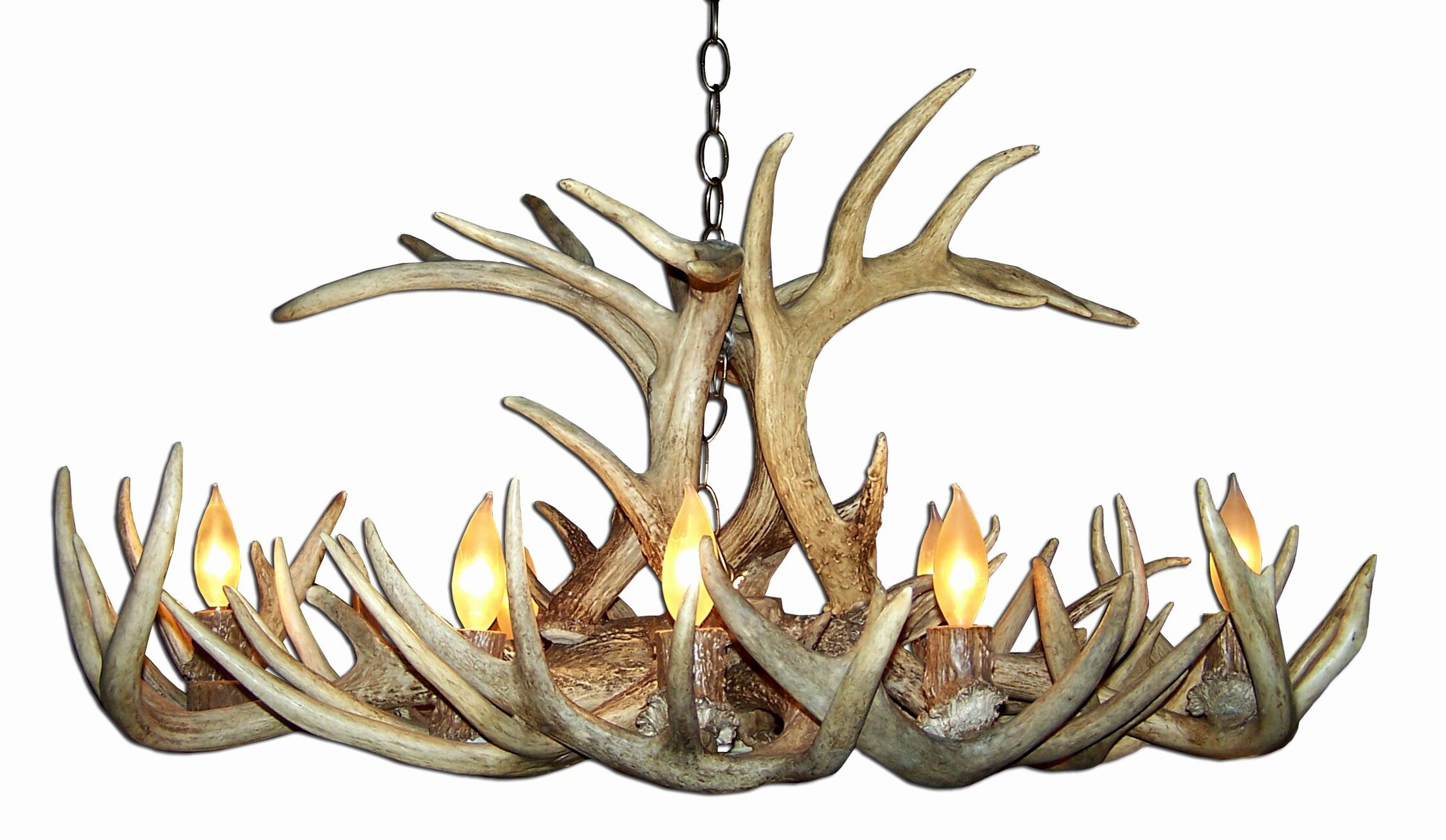 Doliya Antler Whitetail Oblong 8-Light We have associated to option Chandelier Finish: Black/Natural Brown, Shade Included: No, Shade Color: No Shade