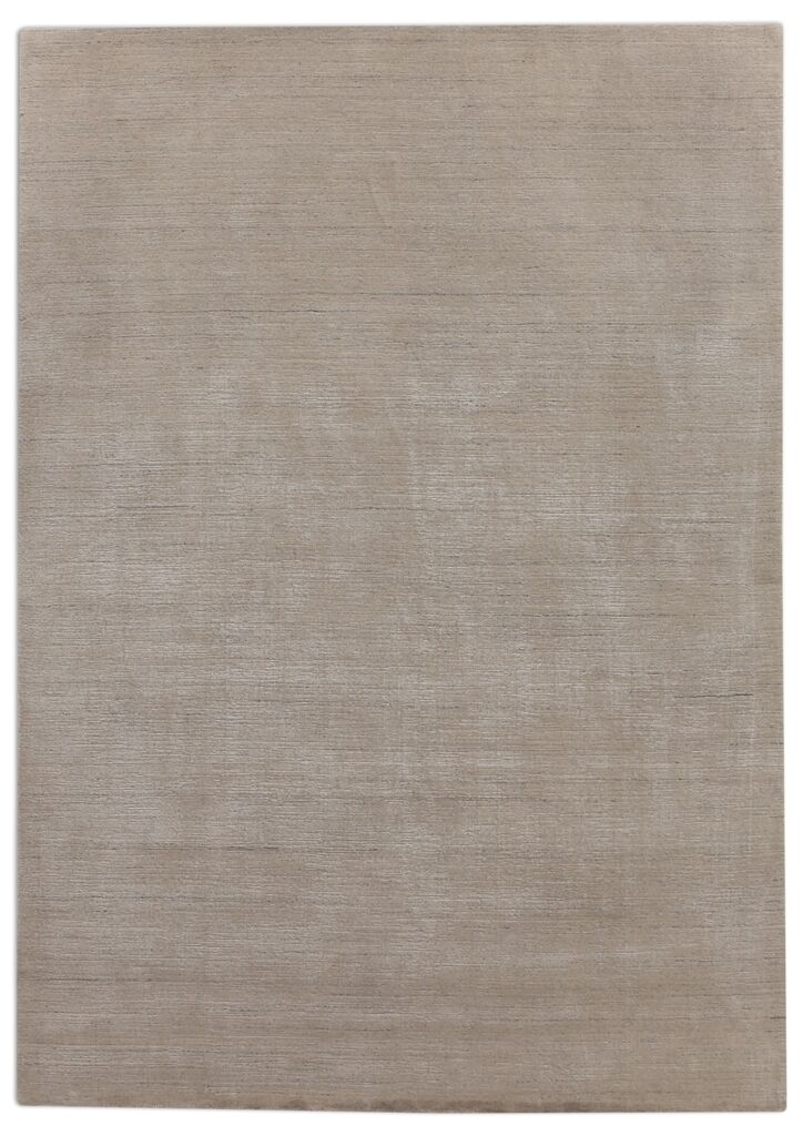 Hand-Woven Light Gray Area Rug Rug Size: Rectangle 9' x 12'