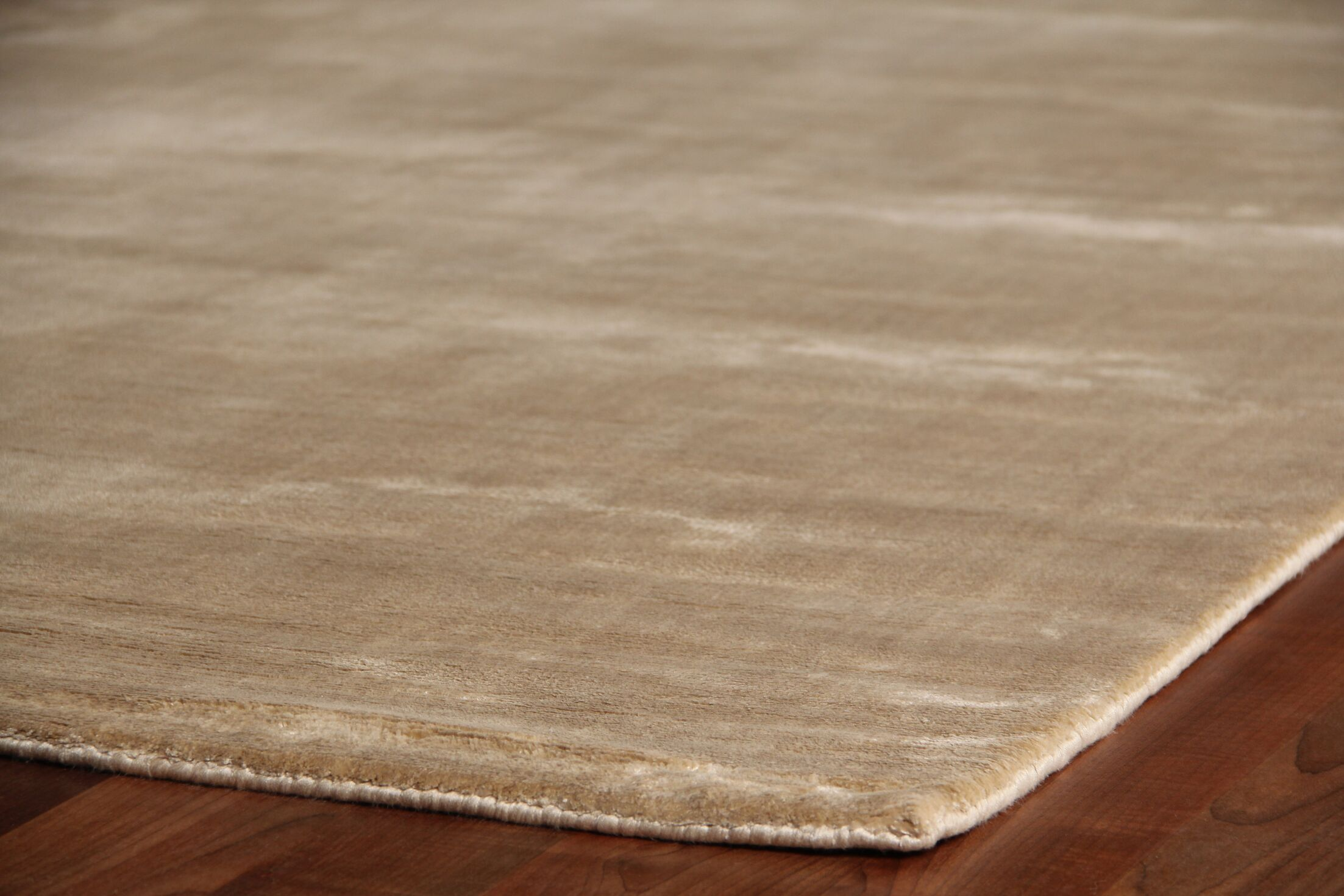 Plain Dove Hand-Knotted Silk Beige Area Rug Rug Size: Rectangle 10' x 14'