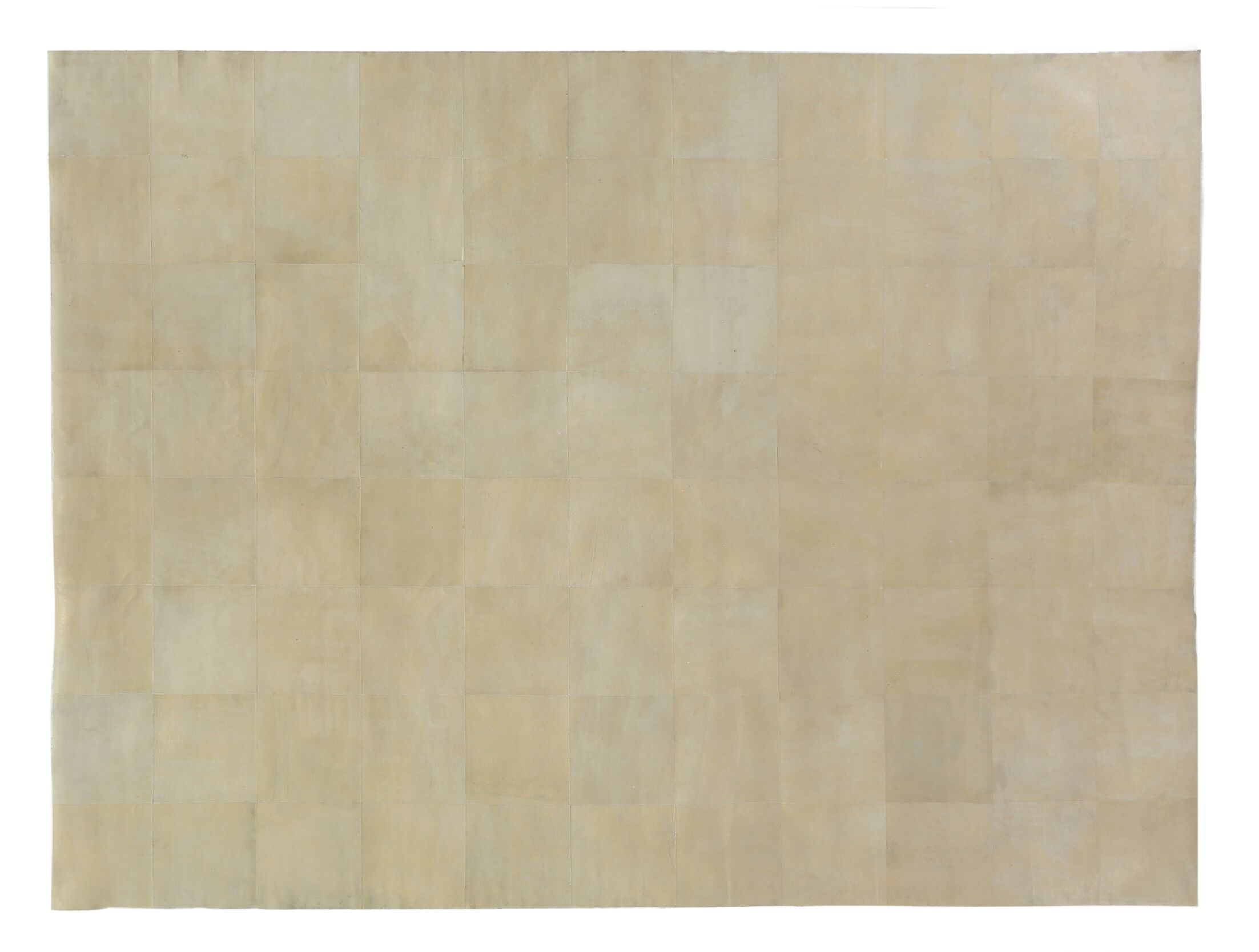 Hand woven Ivory Area Rug Rug Size: Rectangle 5' x 8'