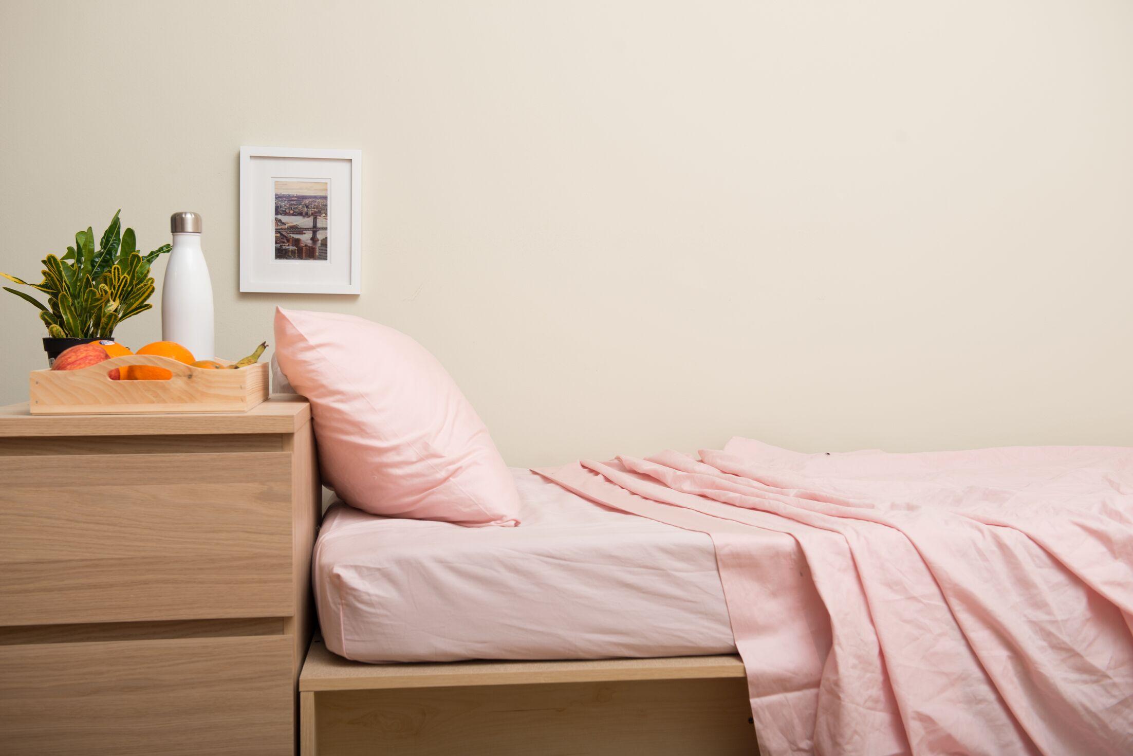 Dade 200 Thread Count Flannel Sheet Set Color: Rose Quartz Pink