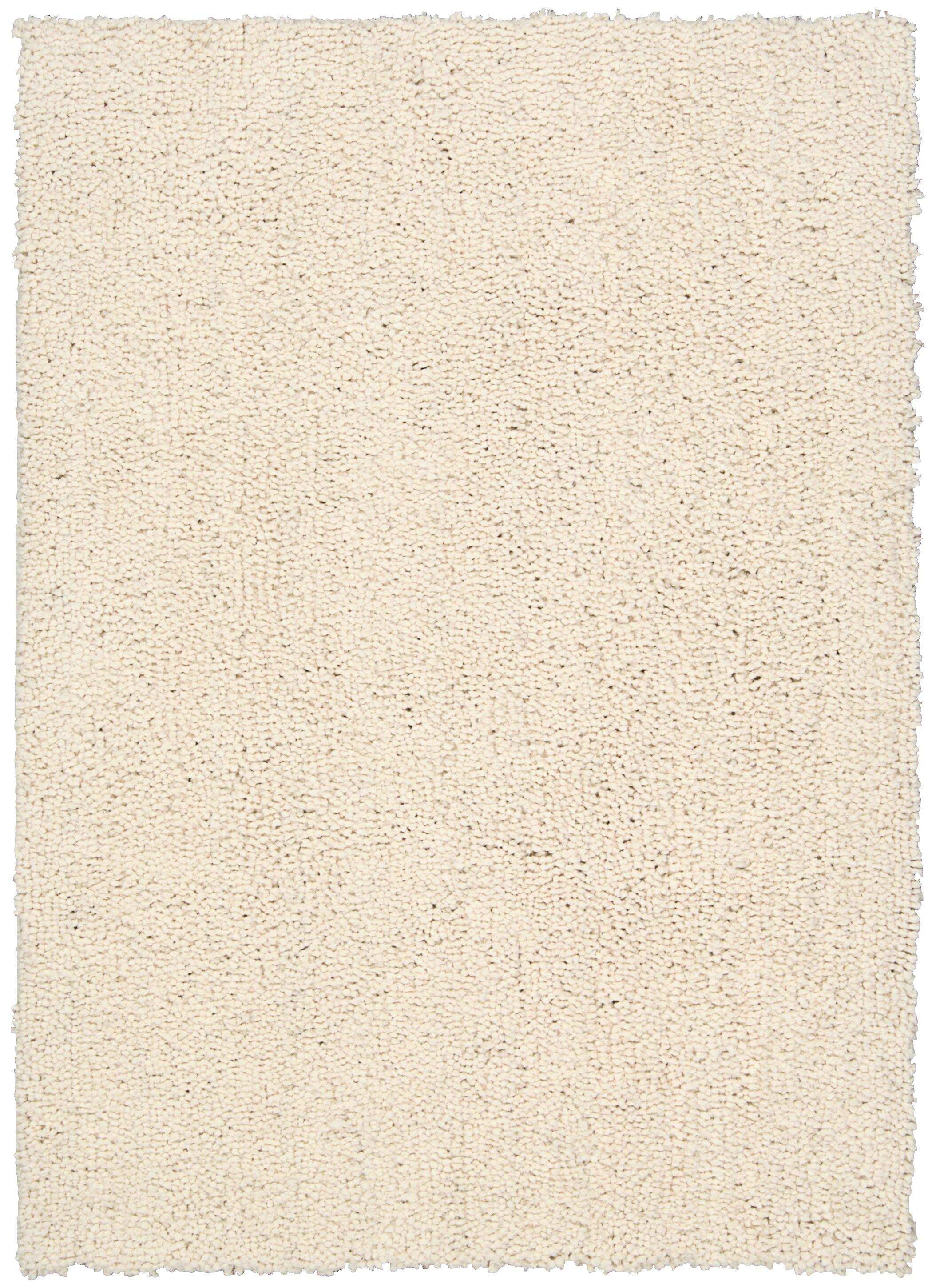 Puli Hand-Woven Loc Ecru Area Rug Rug Size: Rectangle 5' x 7'