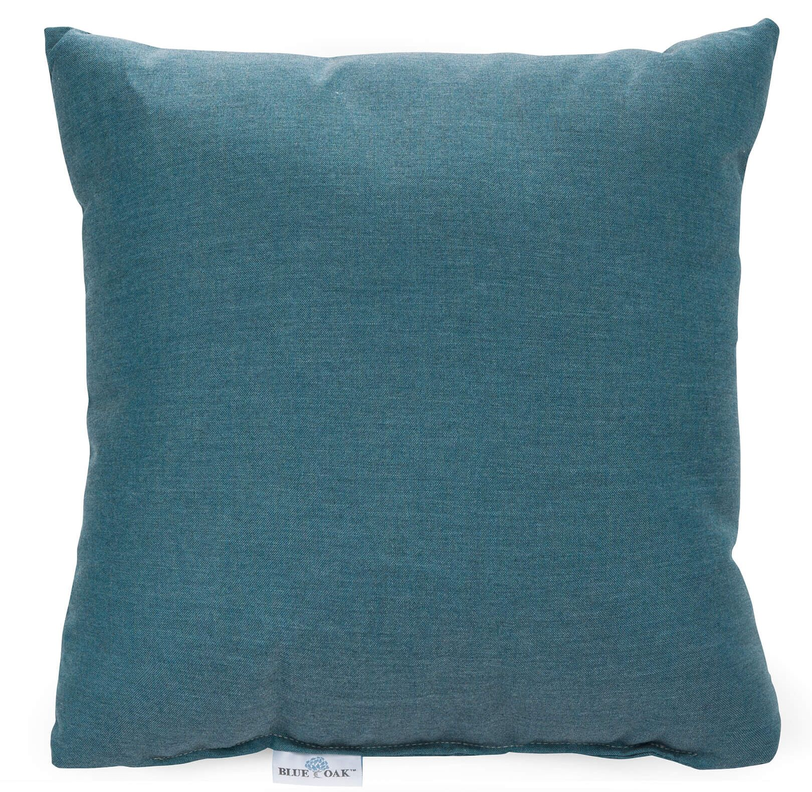 Cast Lagoon Outdoor Acrylic Pillow Color: Teal, Product Type: Throw Pillow