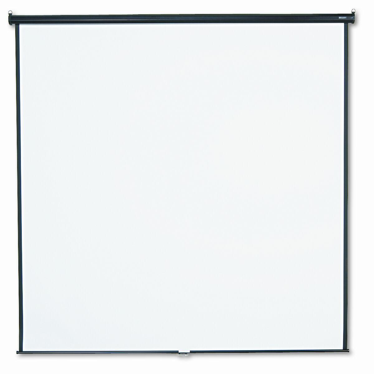 Matte White Manual Projection Screen Size: 96