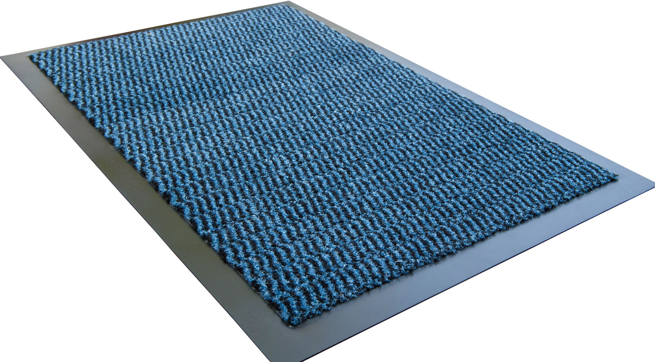 Hastings Advantage Doormat Color: Blue, Mat Size: 2' 8