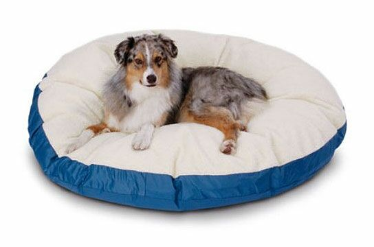 Mulder Round Sherpa Dog Pillow Color: Poly-Suede Sage-Oatmeal Berber, Size: Large (42