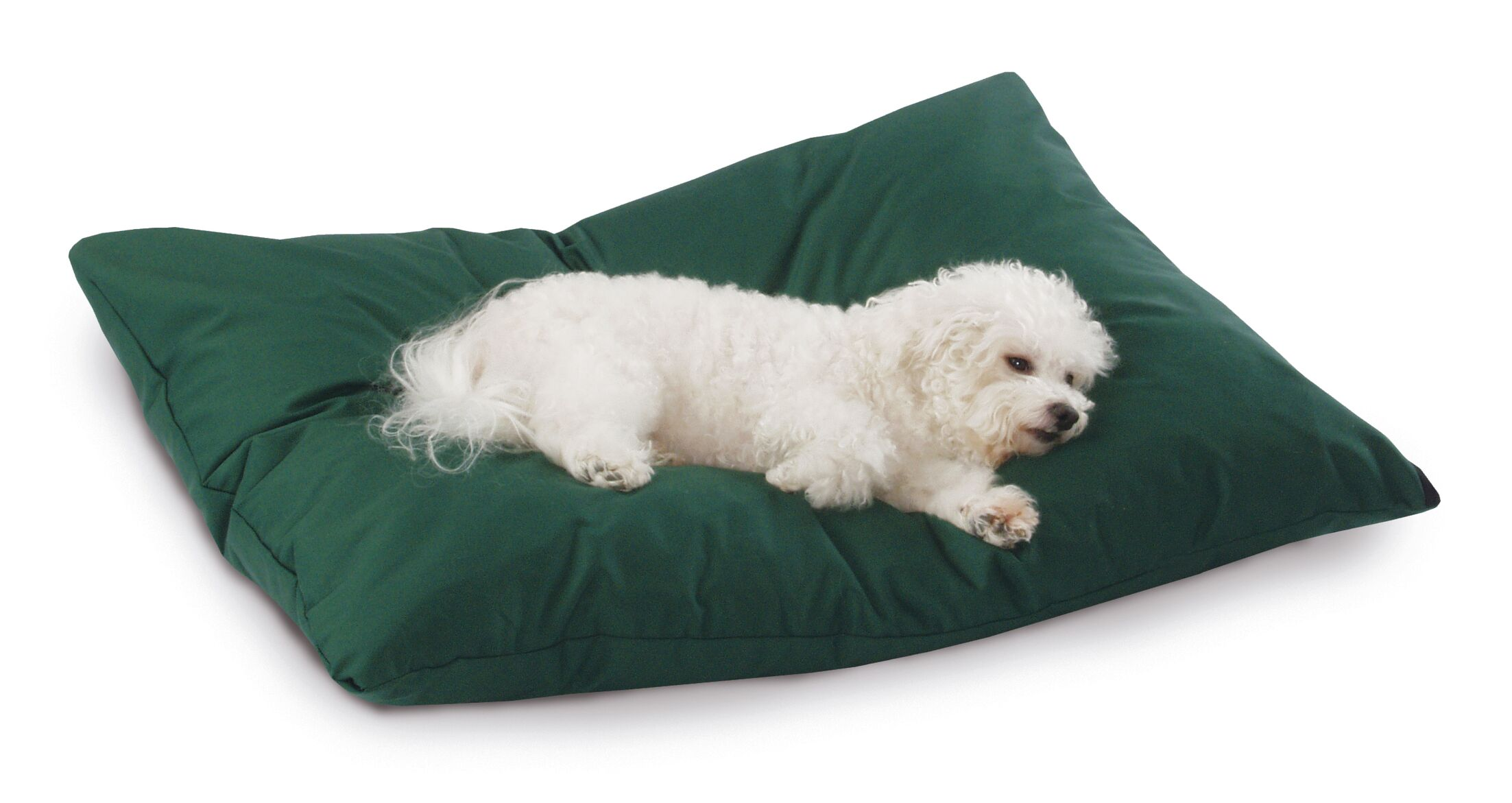 Mulder Rectangular Max Dog Pillow Size: Medium (33