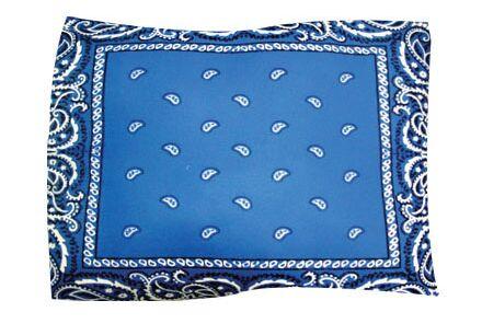 Bandana Pet Throw Size: X-Large, Color: Blue
