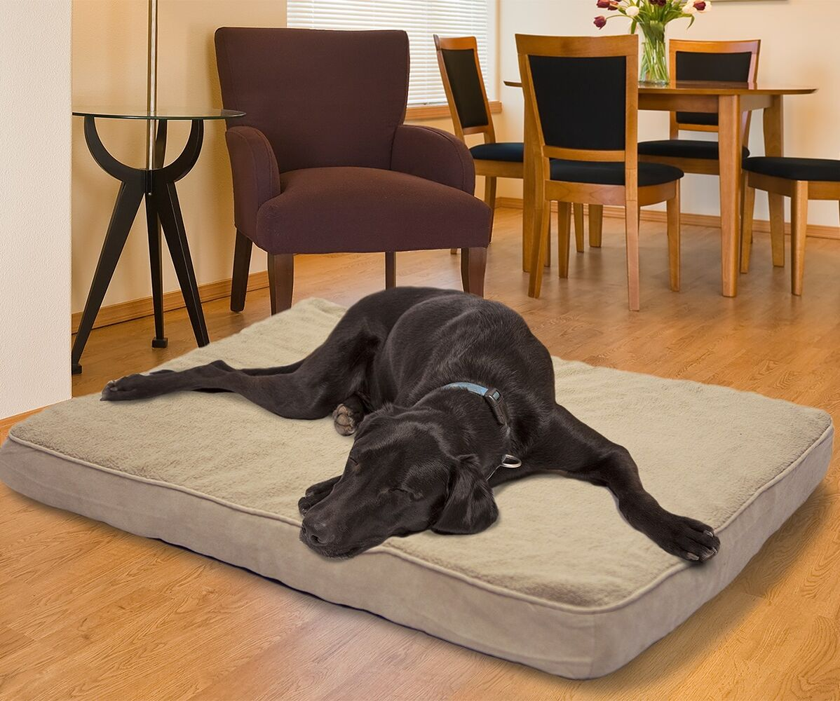 Arocho Terry and Suede Memory Foam Dog Bed Color: Clay, Size: Medium (30
