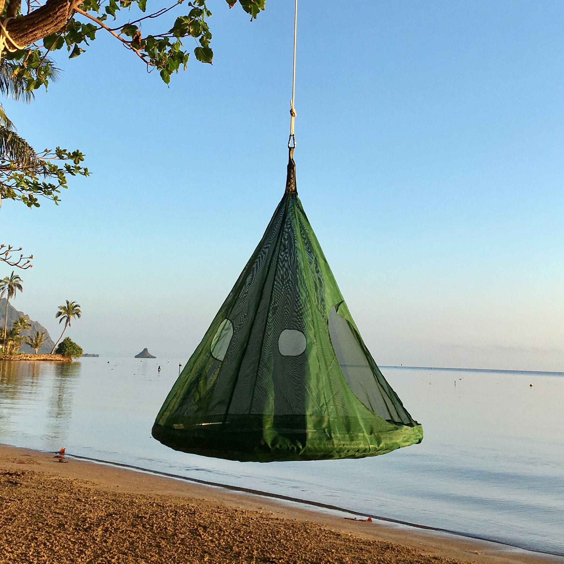 TearDrop Tree Hammock Color: Dark Green