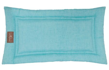 Indoor/Outdoor Cozy Mat Color: Aqua, Size: Small (24