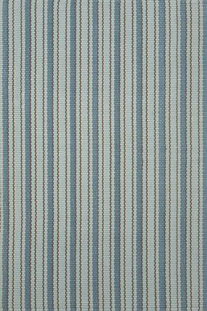 Woven Hooked Blue Indoor/Outdoor Area Rug Rug Size: Runner 2'6