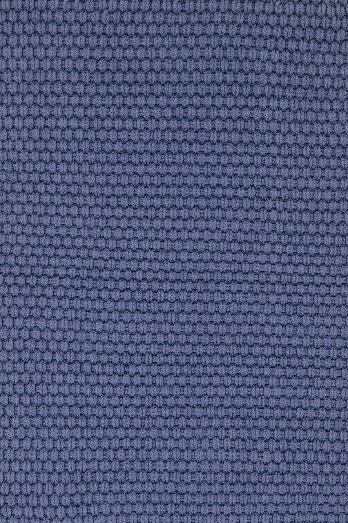 Indoor/Outdoor Blue Outdoor Area Rug Rug Size: Rectangle 4' x 6'