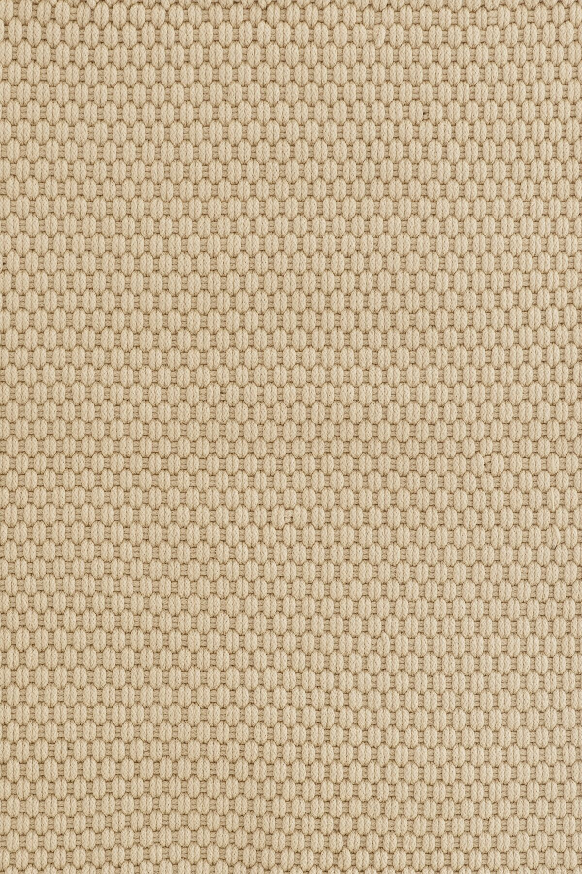 Indoor/Outdoor Beige Area Rug Rug Size: Rectangle 6' x 9'