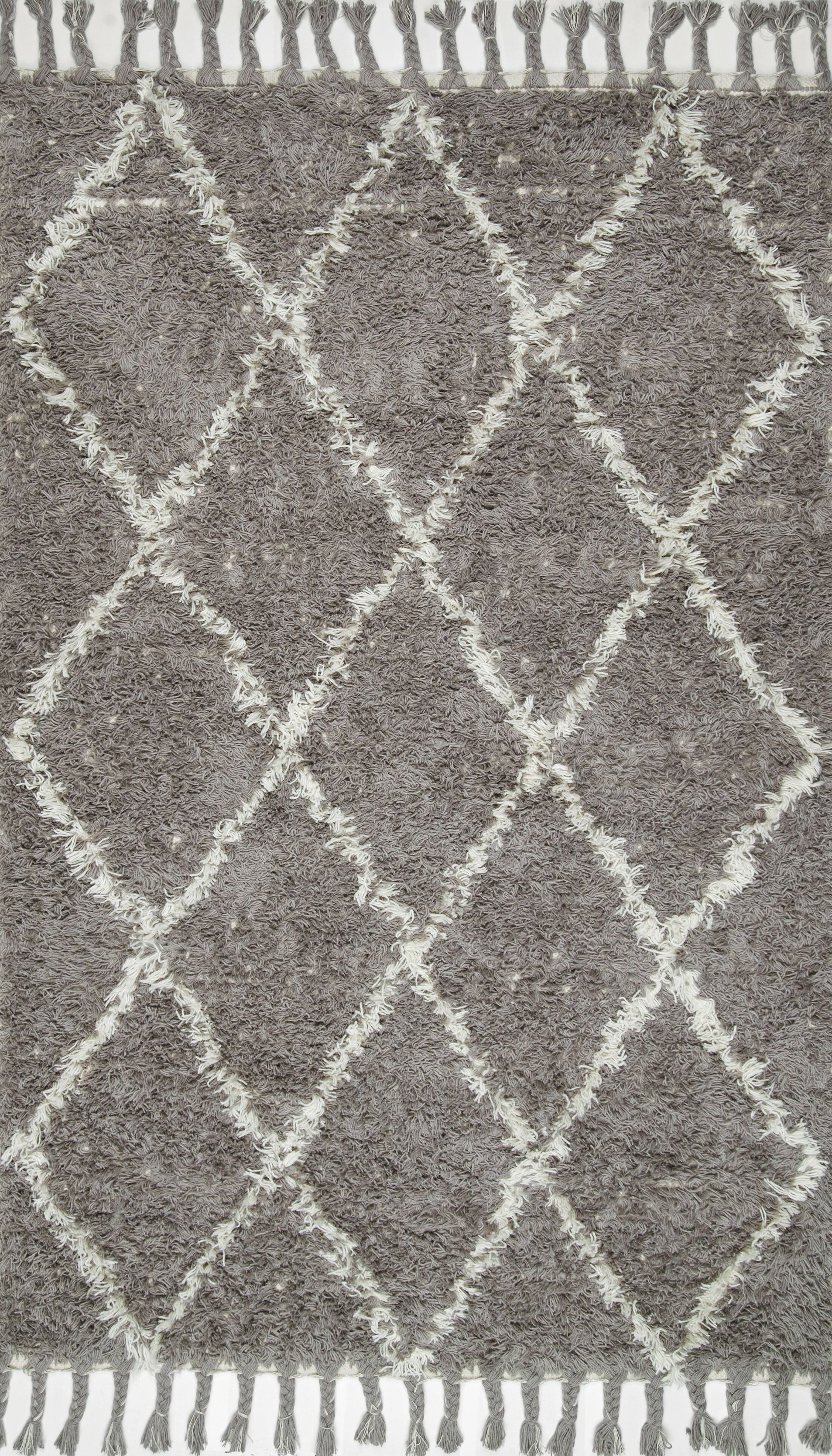 Caiden Hand-Knotted Gray Area Rug Rug Size: Rectangle 9' x 12'