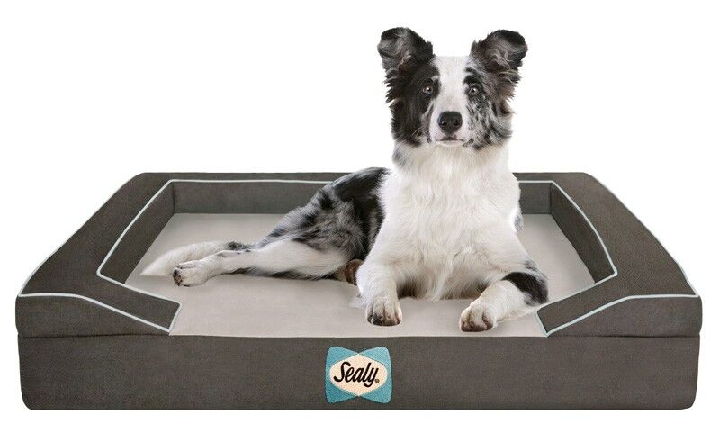Sealy Lux Bolster Dog Bed Color: Max-Gray, Size: Medium (36