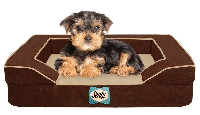 Sealy Lux Bolster Dog Bed Size: Small (25