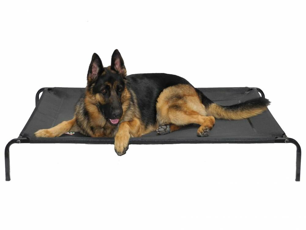 Elevated Cooling Cot Pet Bed Size: Medium (39
