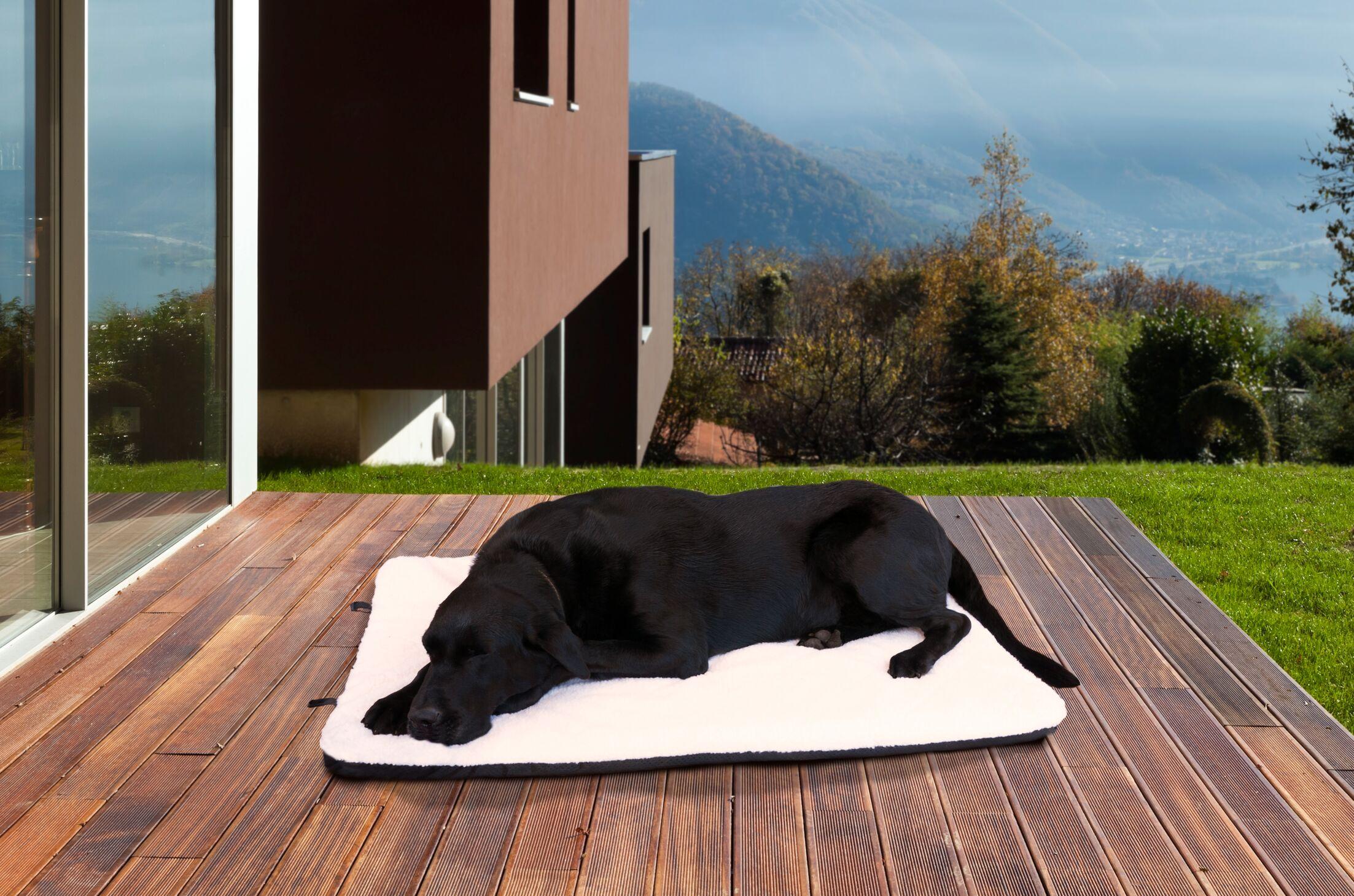 Billy Sherpa Crate Orthopedic Pet Mat Size: Jumbo (48