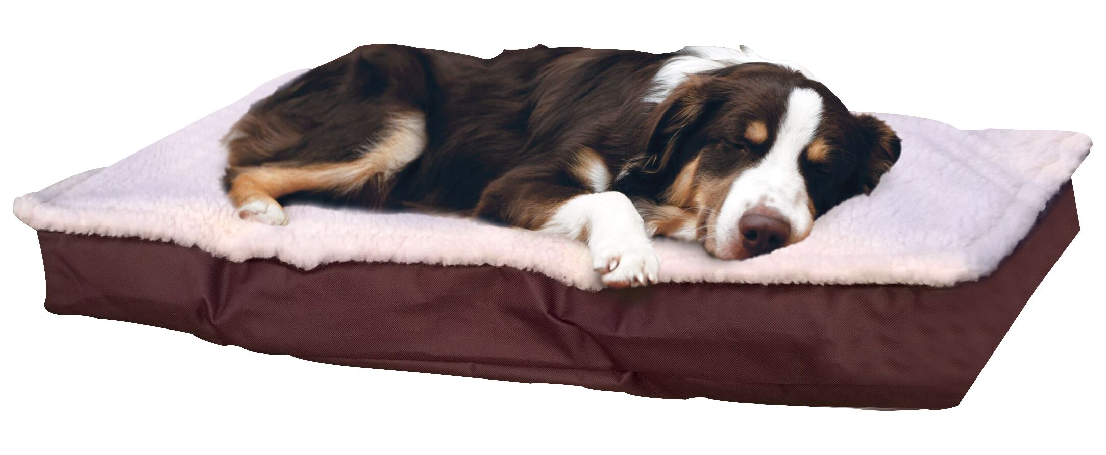 Blossom Deluxe Outdoor Pillow Dog Bed Color: Espresso, Size: Large (3