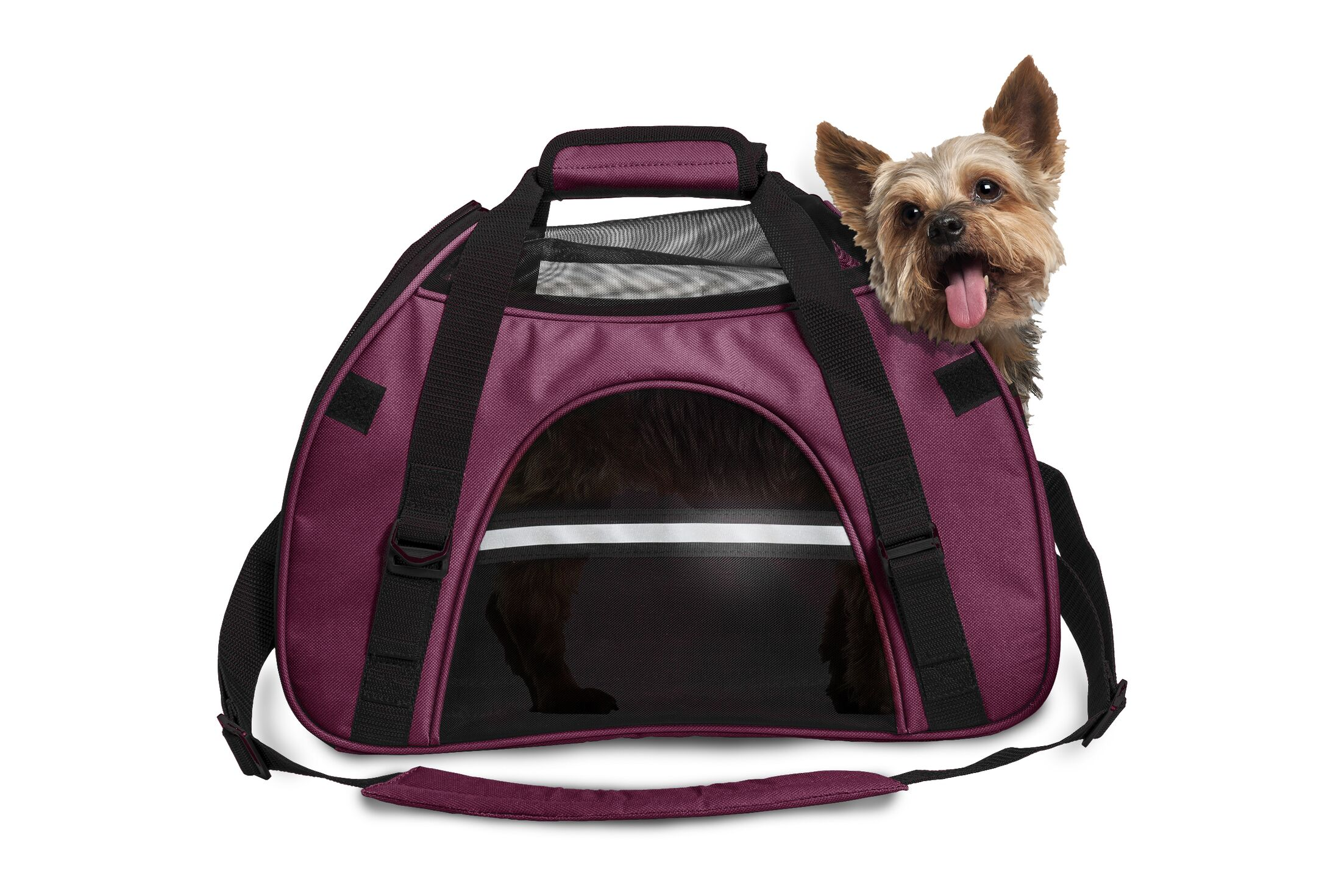 Pet Carrier Color: Raspberry, Size: Small (11