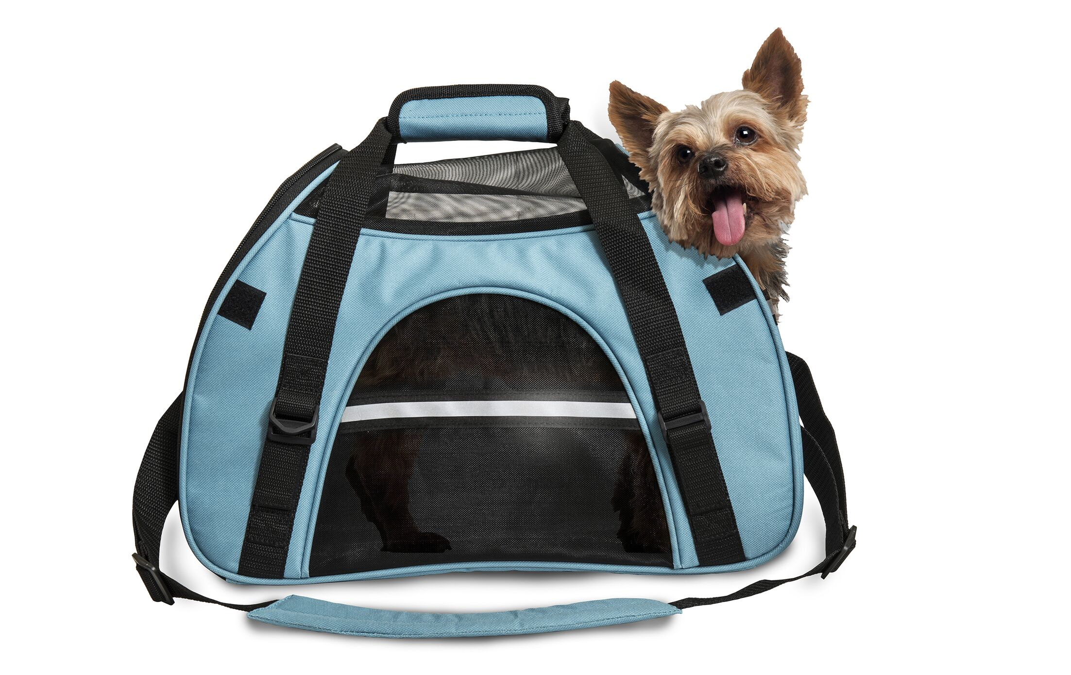 Pet Carrier Color: Robin Blue, Size: Small (11