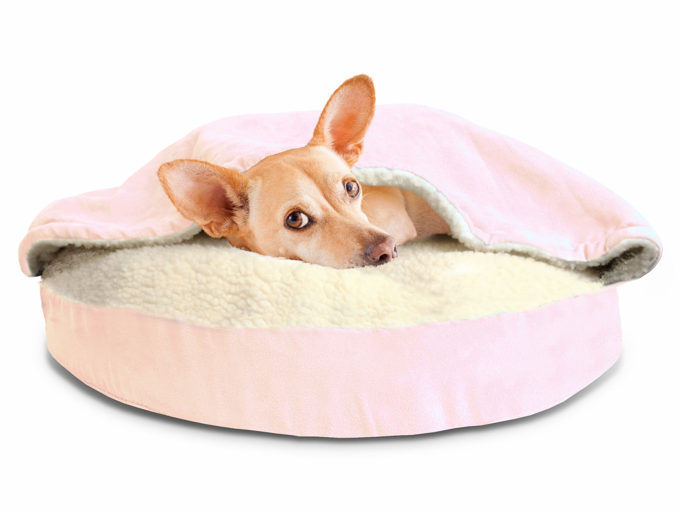 Fern Snuggery Hooded Dog Bed Color: Pink, Size: 35