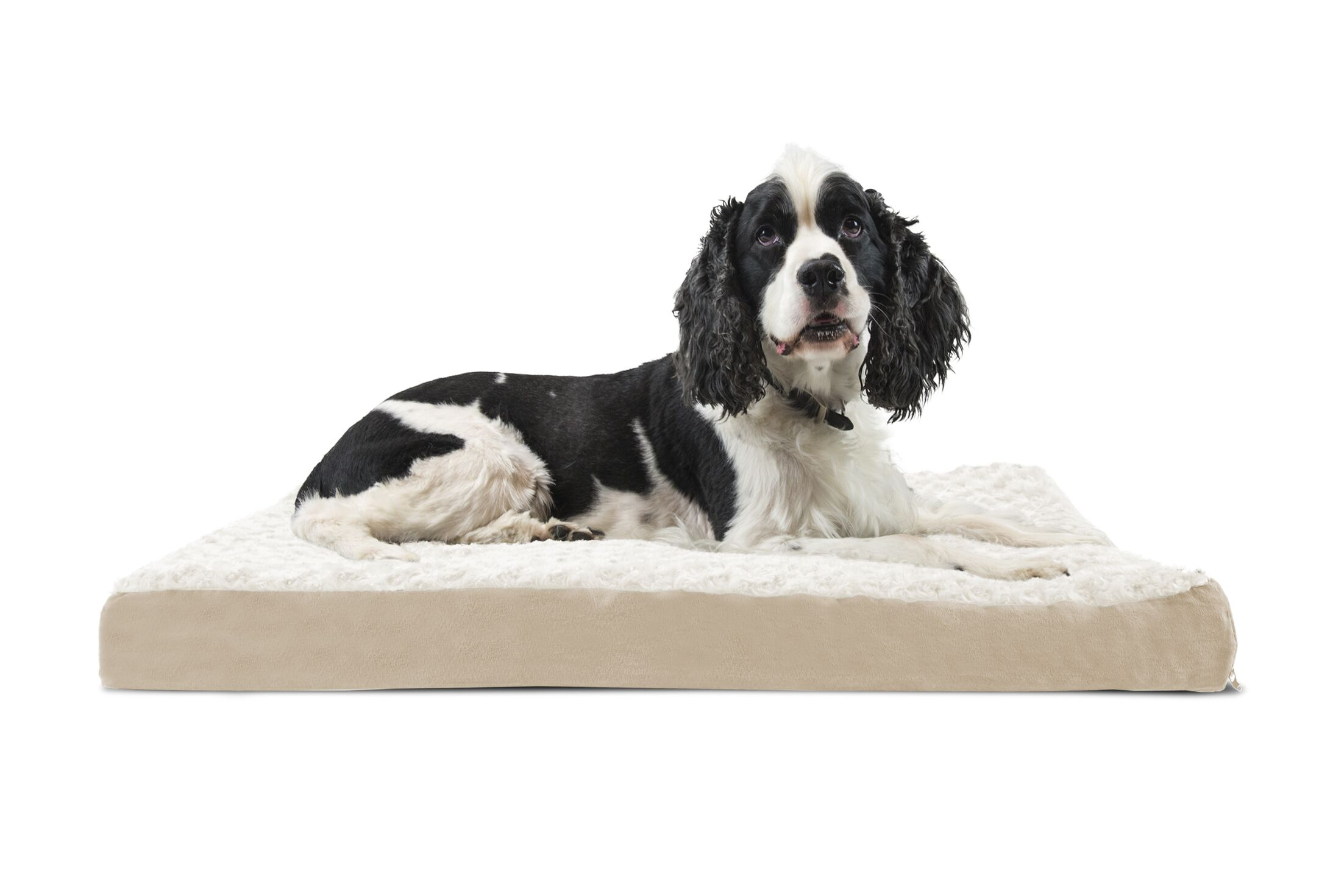 Ernie Ultra Plush Deluxe Ortho Pet Bed Size: Medium (30