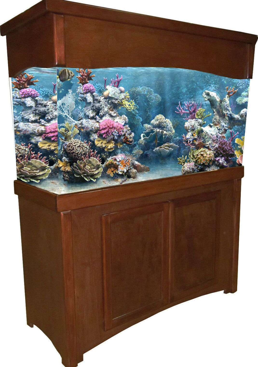 Calypso Birch Series Aquarium Stand Finish: Cherry, Size: 32.5