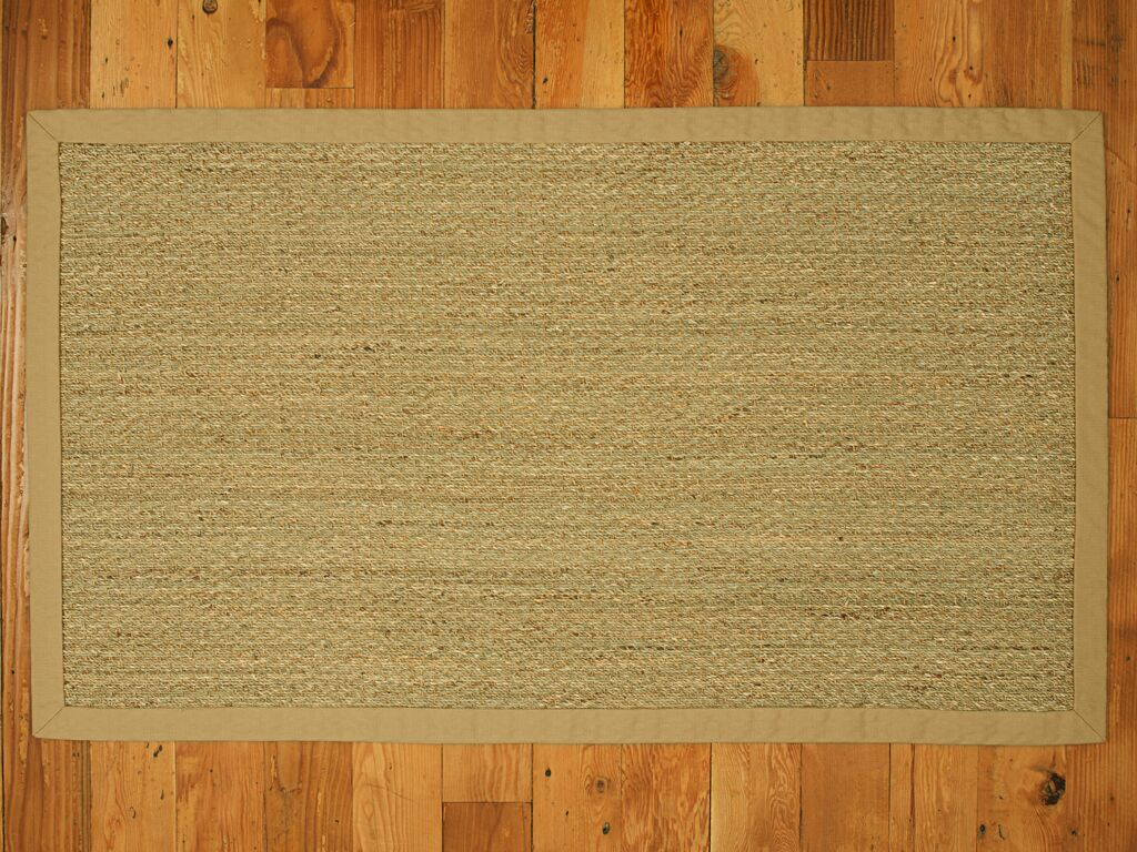 Alland Natural Fibers Sage Indoor Area Rug Rug Size: Rectangle 4' x 6'