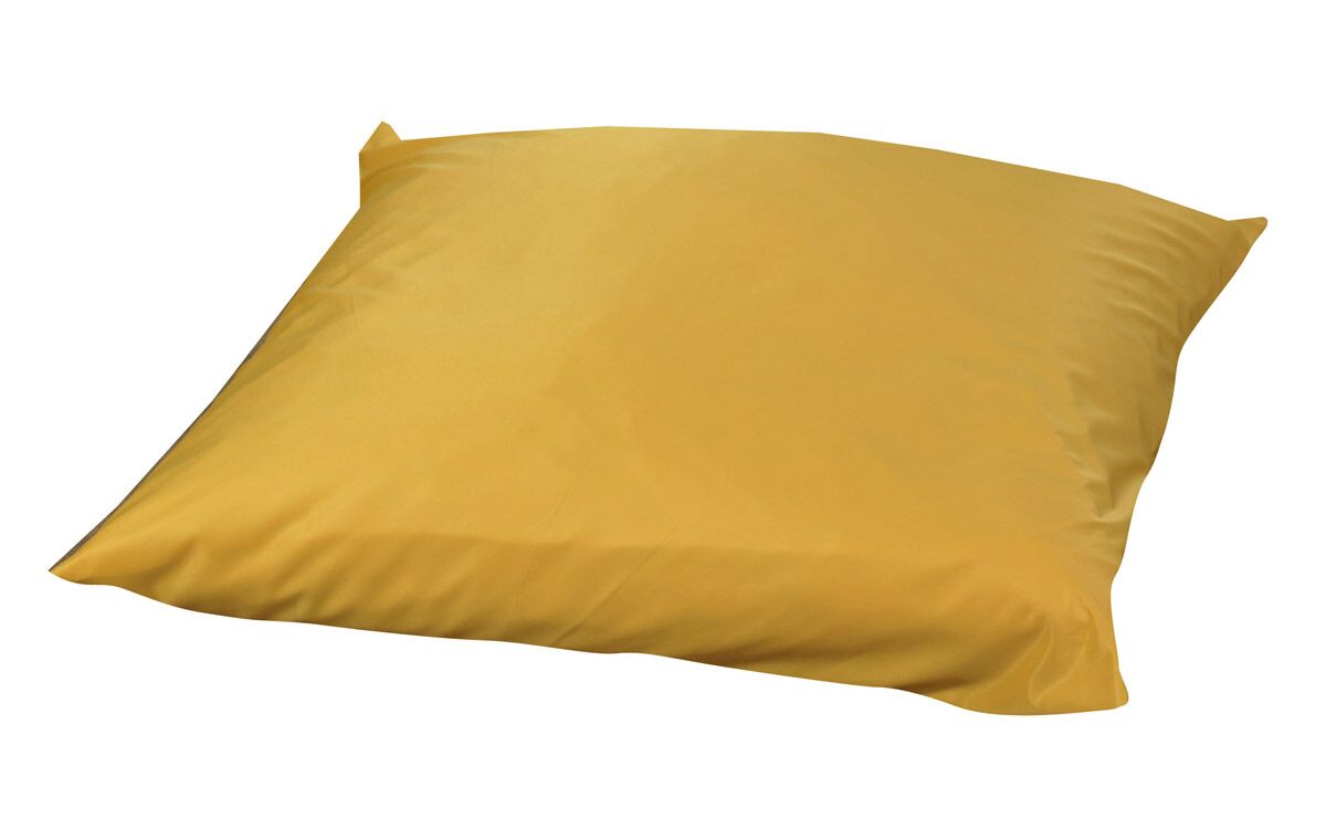 Friedensburg Floor Pillow Color: Yellow