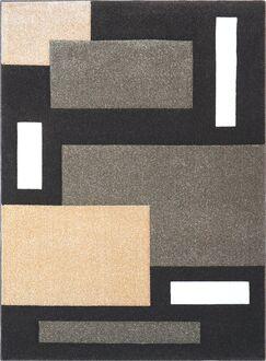 Sumatra Gray Cubes Area Rug Rug Size: Rectangle 2'6